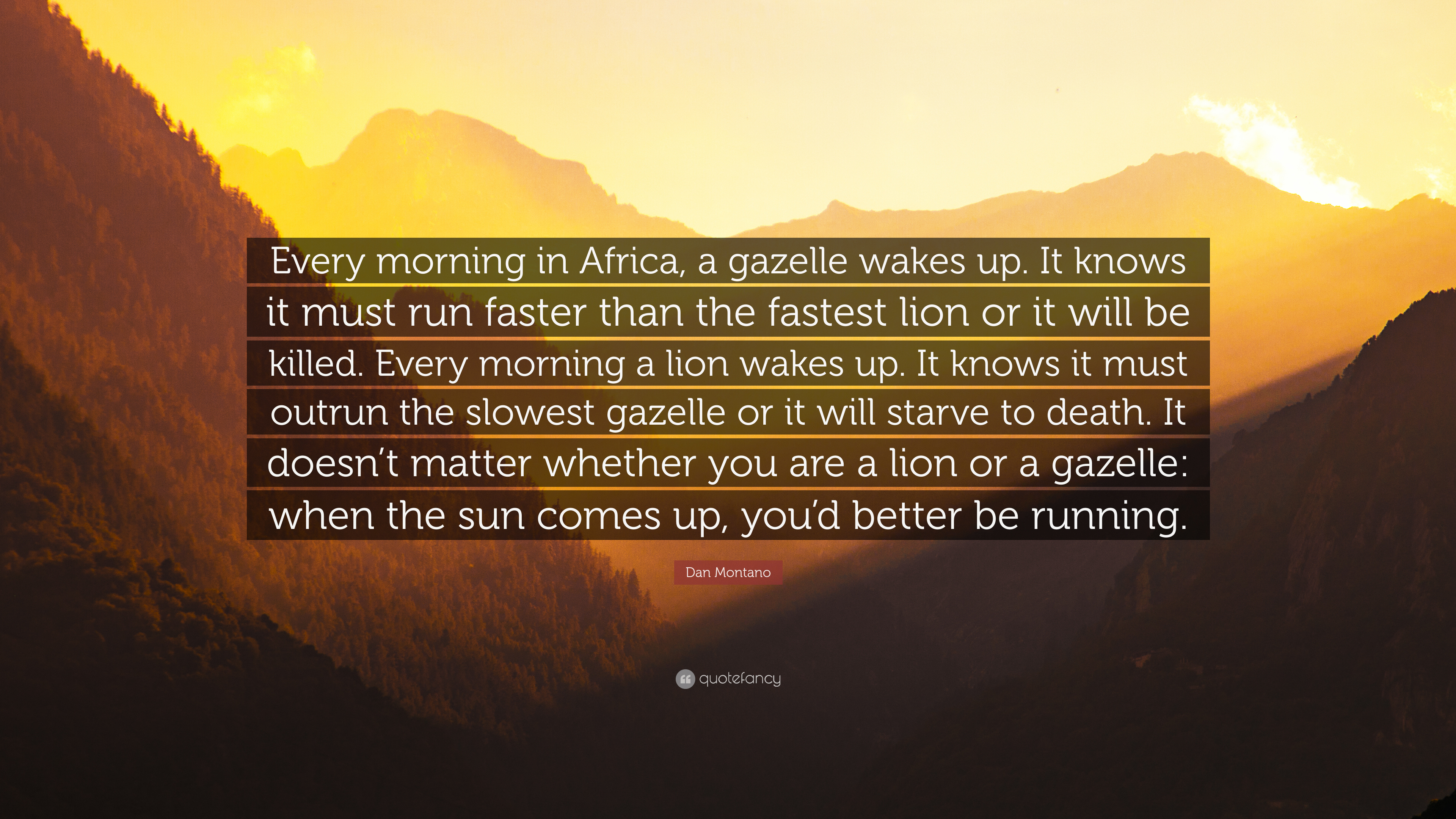 Dan Montano Quote Every Morning In Africa A Gazelle Wakes Up It