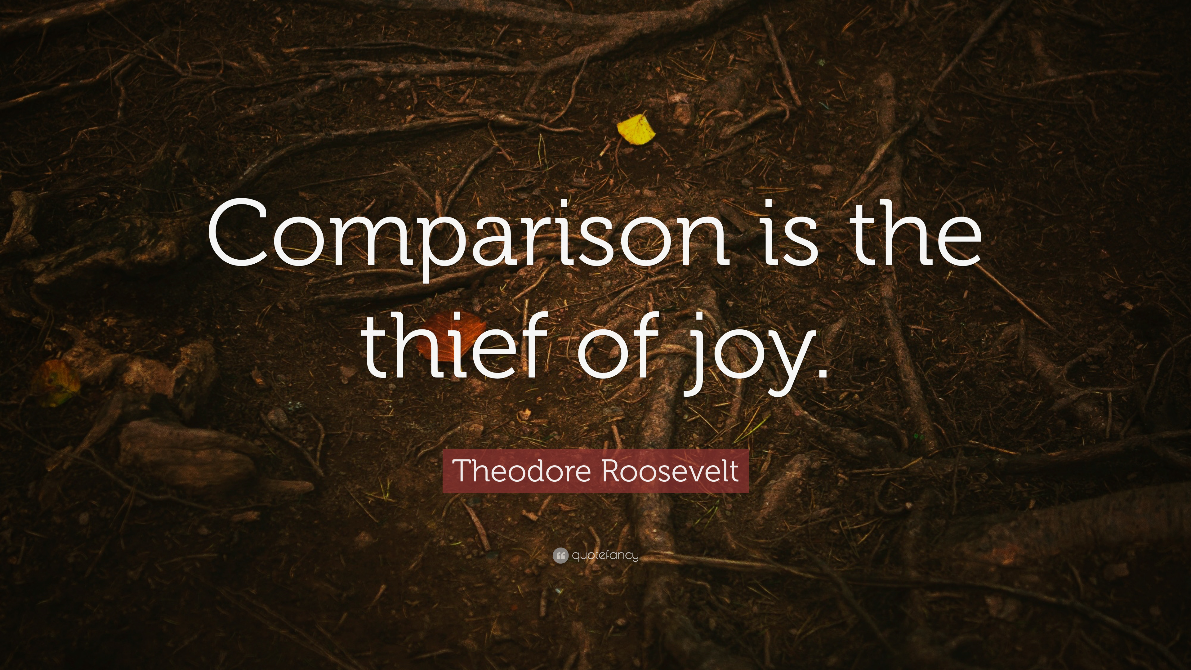 "Theodore Roosevelt Quotes Fascinating Theodore Roosevelt Quote ""Comparison Is The Thief Of Joy."" 17"