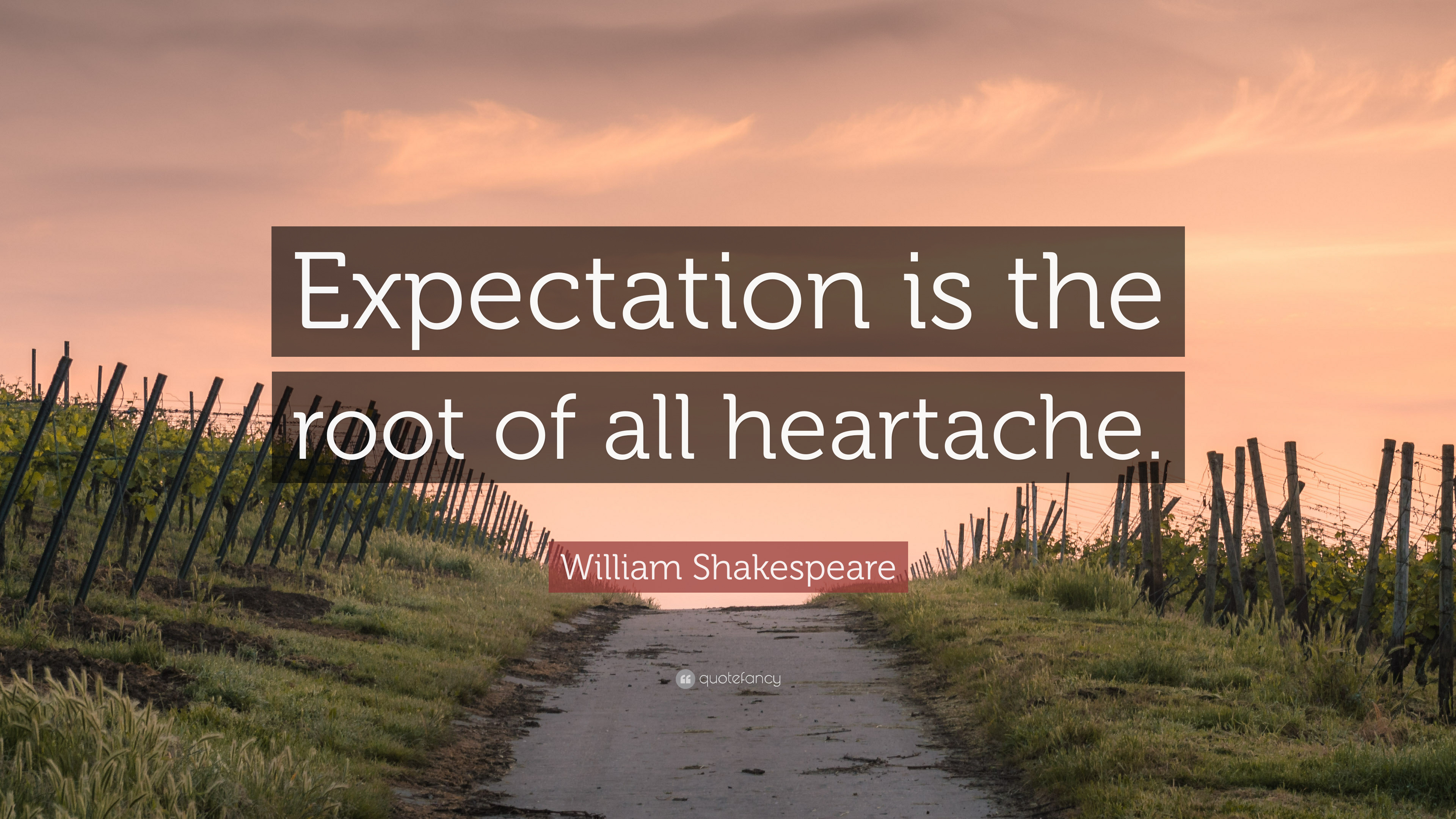"Shakespeare Quotes About Friendship William Shakespeare Quote ""Expectation Is The Root Of All"