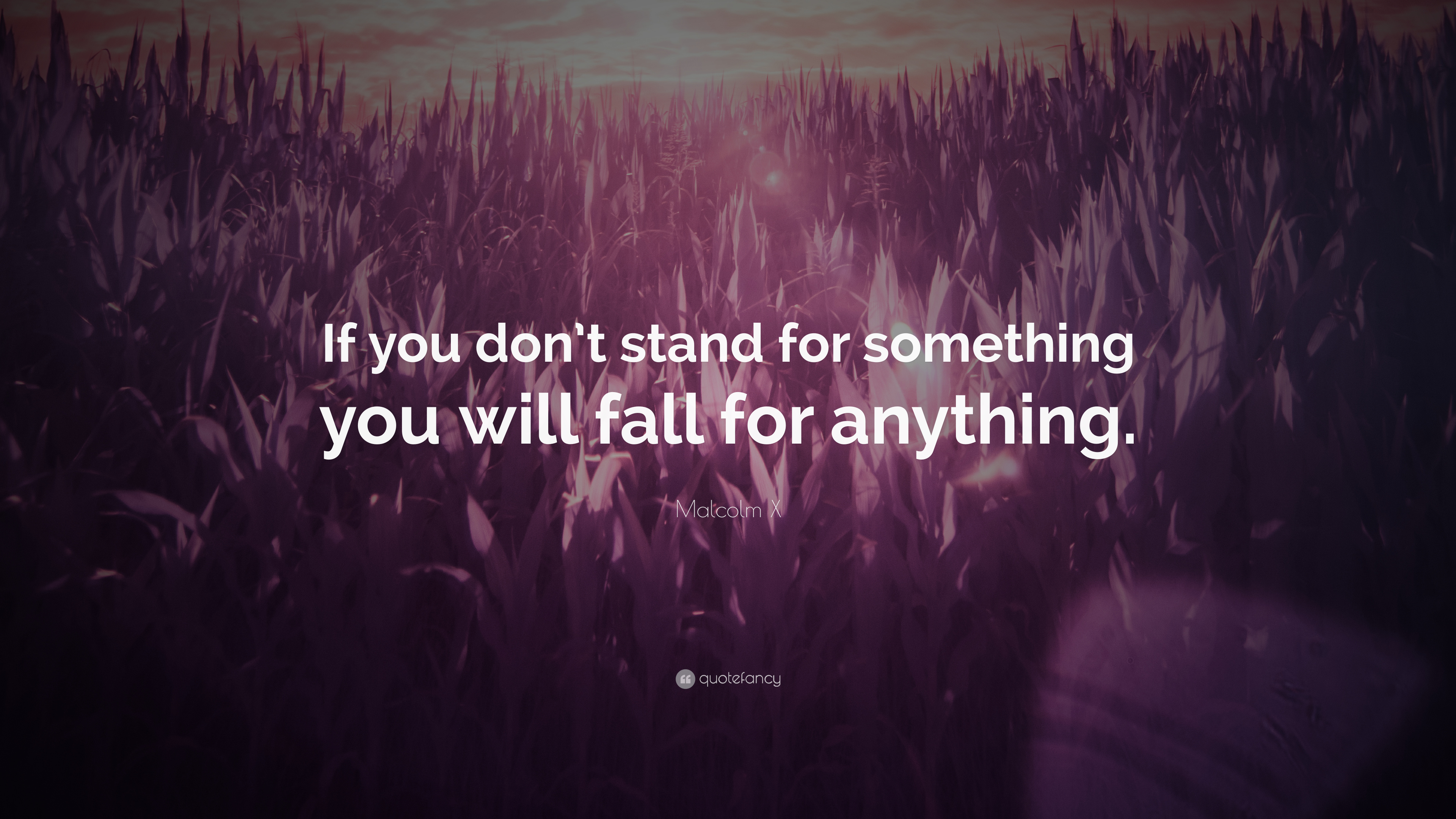 Malcolm X Quote If You Don T Stand For Something You