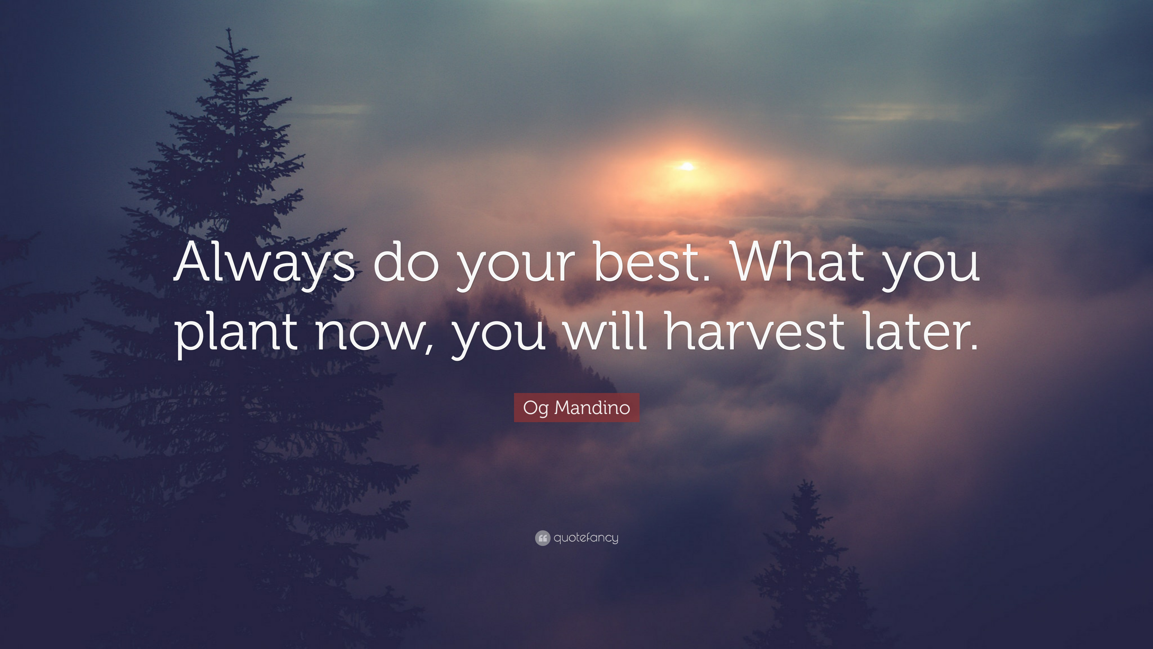"""Og Mandino Quote: """"Always Do Your Best. What You Plant Now"""