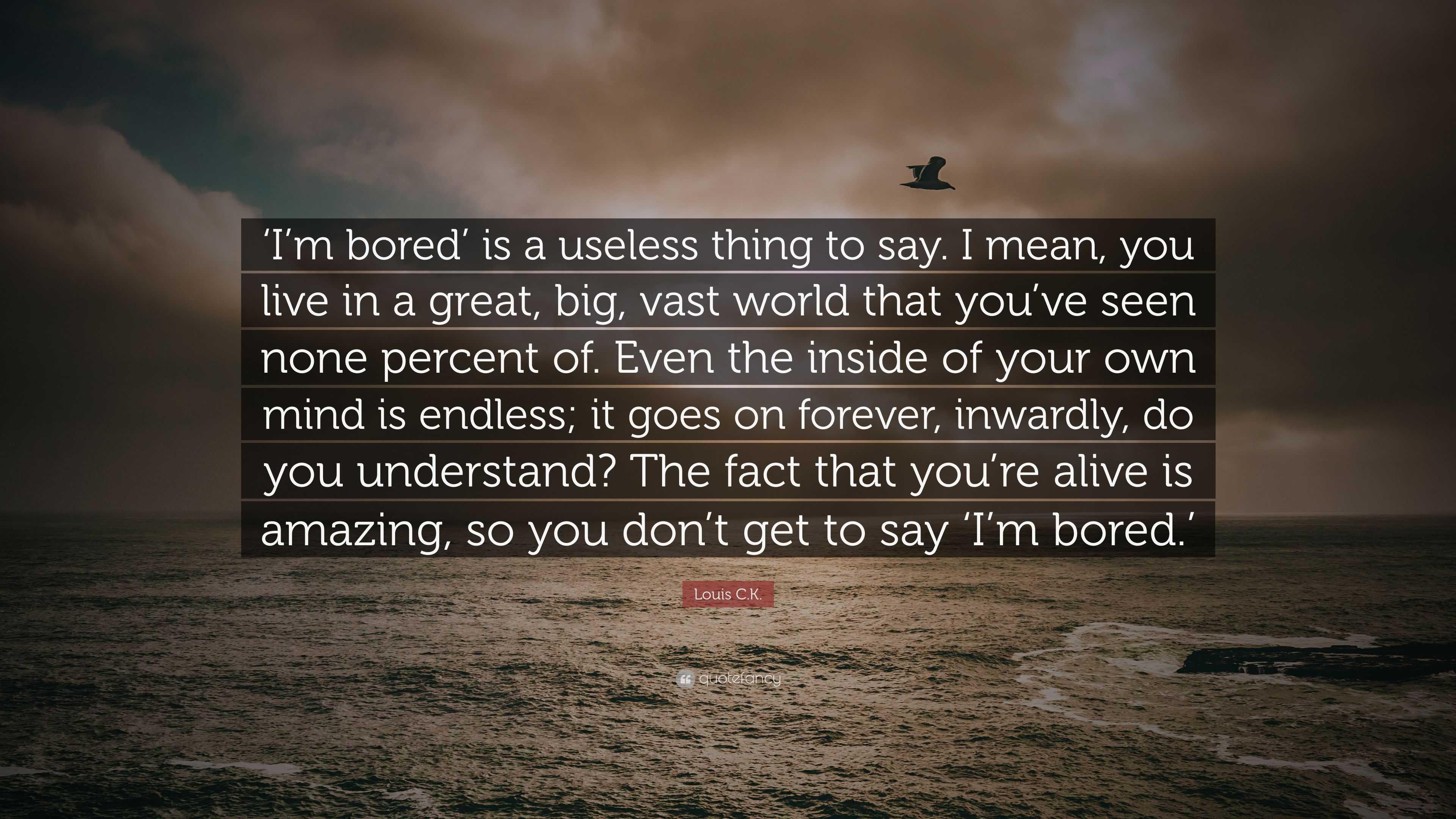I M Bored Quotes