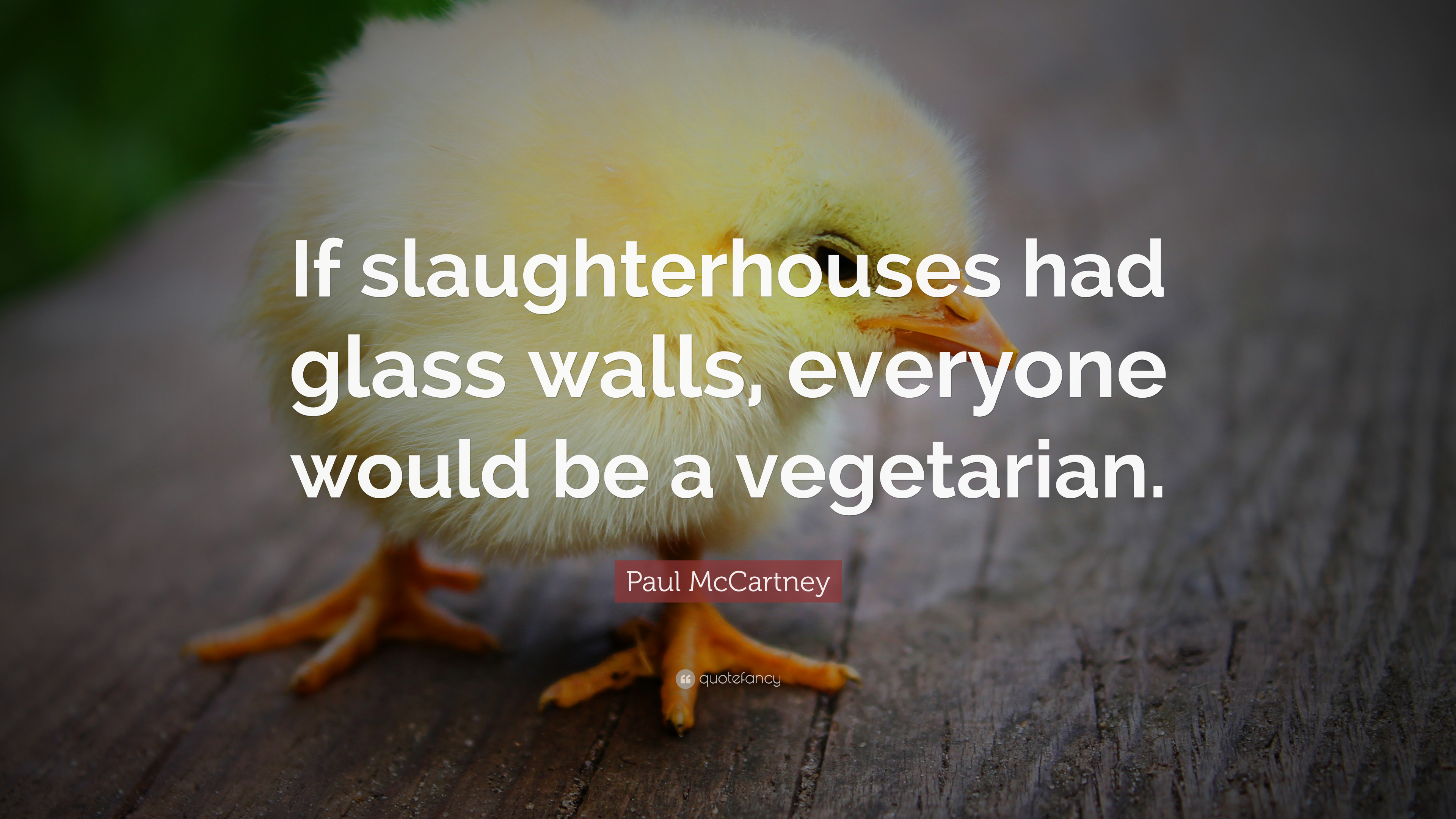 Paul Mccartney Quote If Slaughterhouses Had Glass Walls Everyone