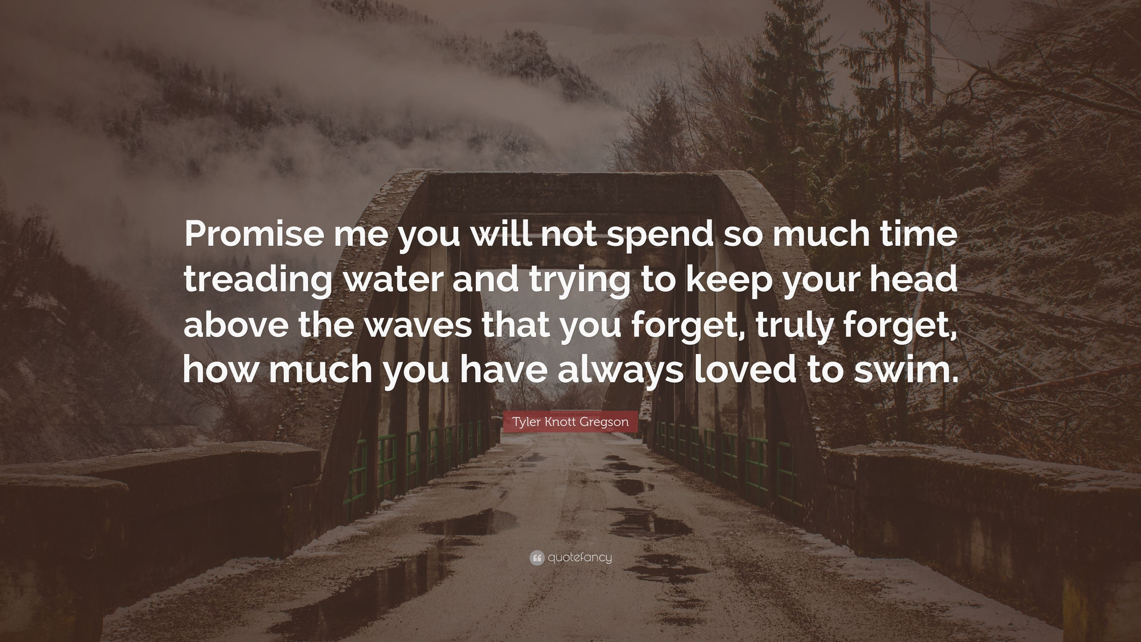 Tyler Knott Gregson Quote Promise Me You Will Not Spend So Much