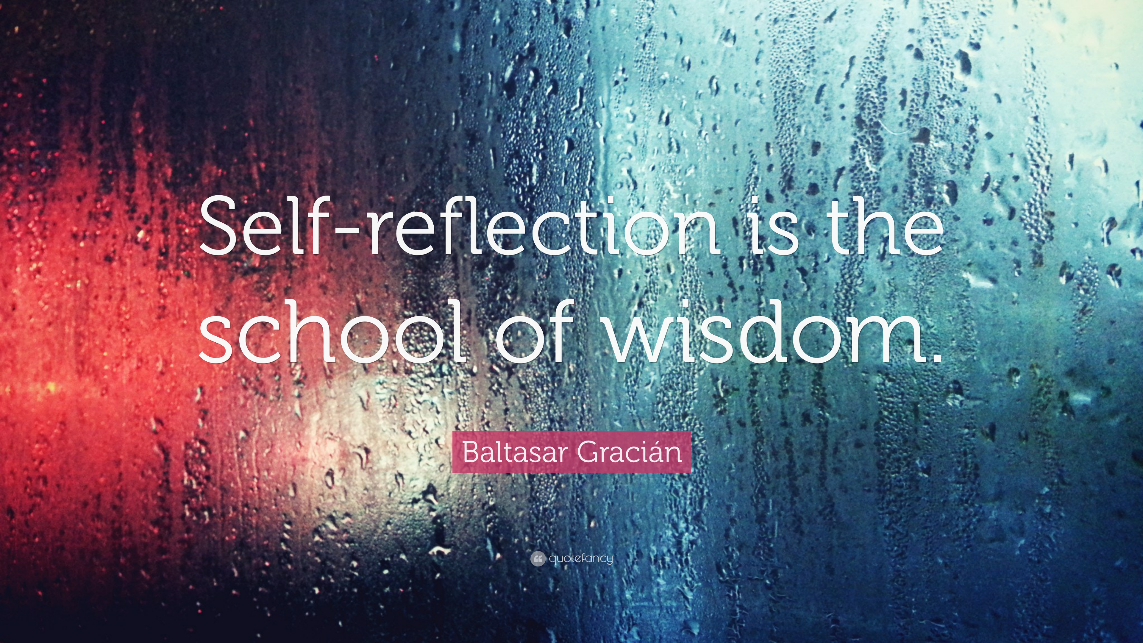 """Baltasar Gracián Quote: """"Self-reflection Is The School Of"""