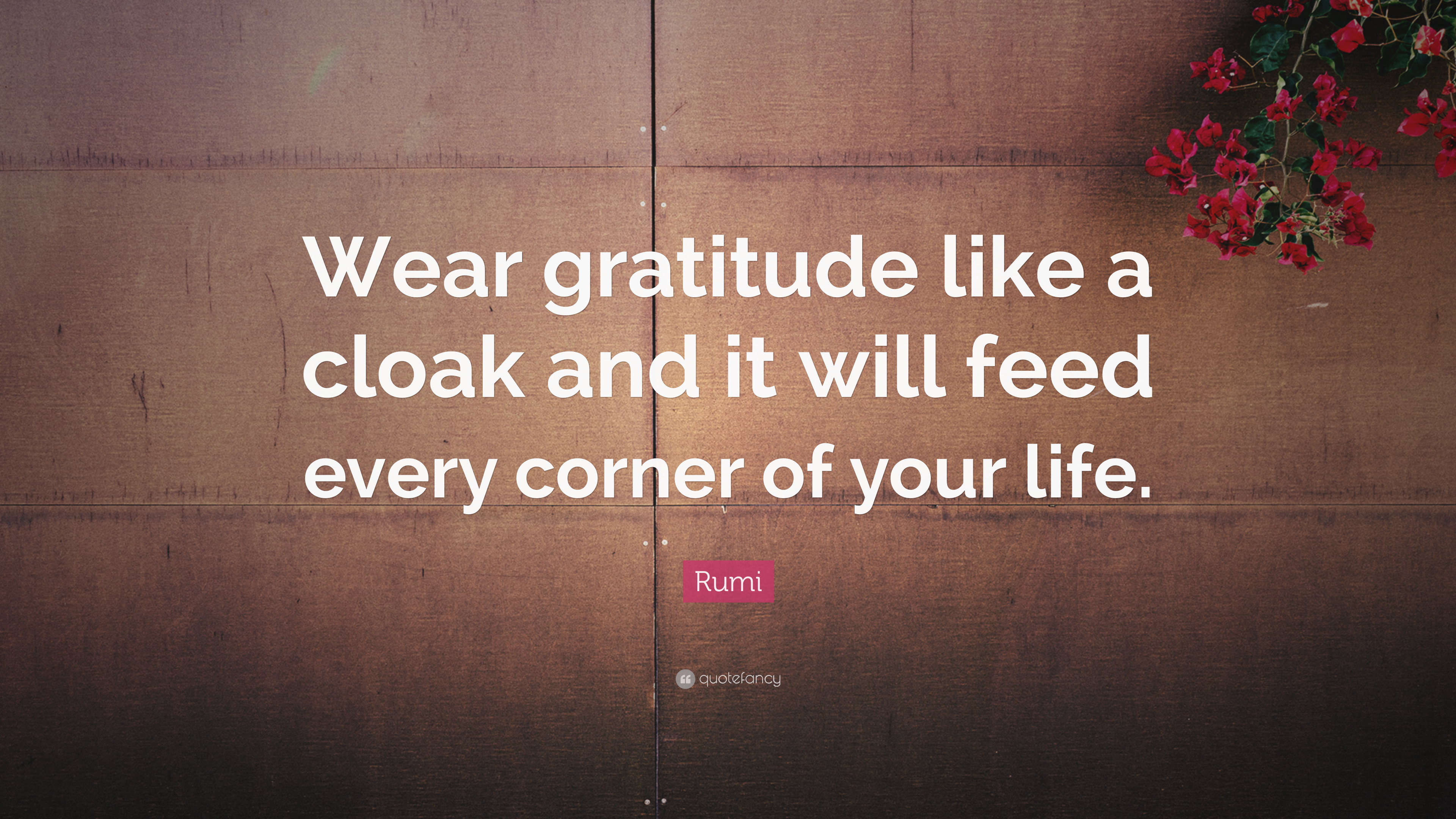 """Rumi Quote: """"Wear gratitude like a cloak and it will feed ..."""