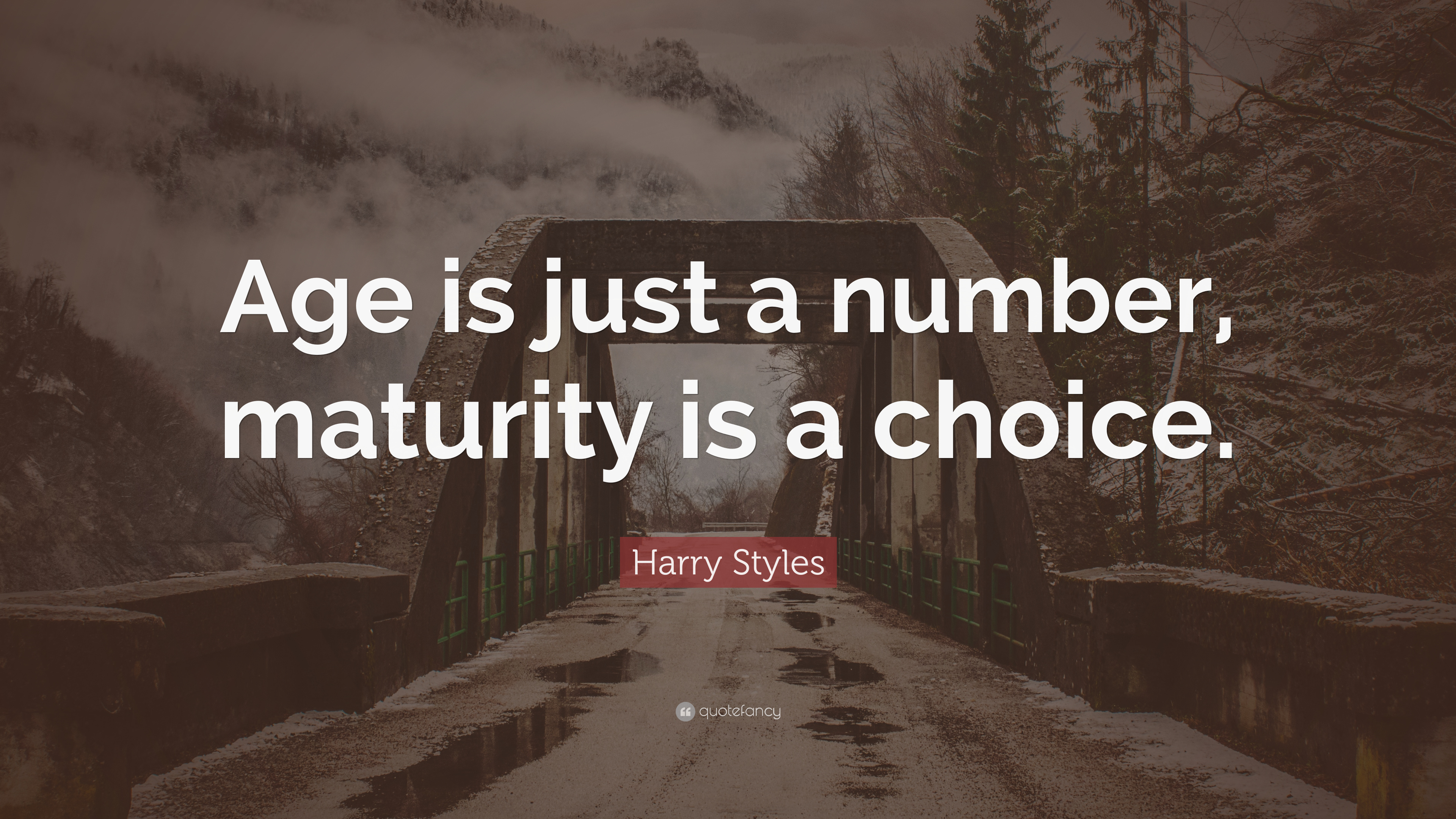 """Harry Styles Quote: """"Age Is Just A Number, Maturity Is A"""