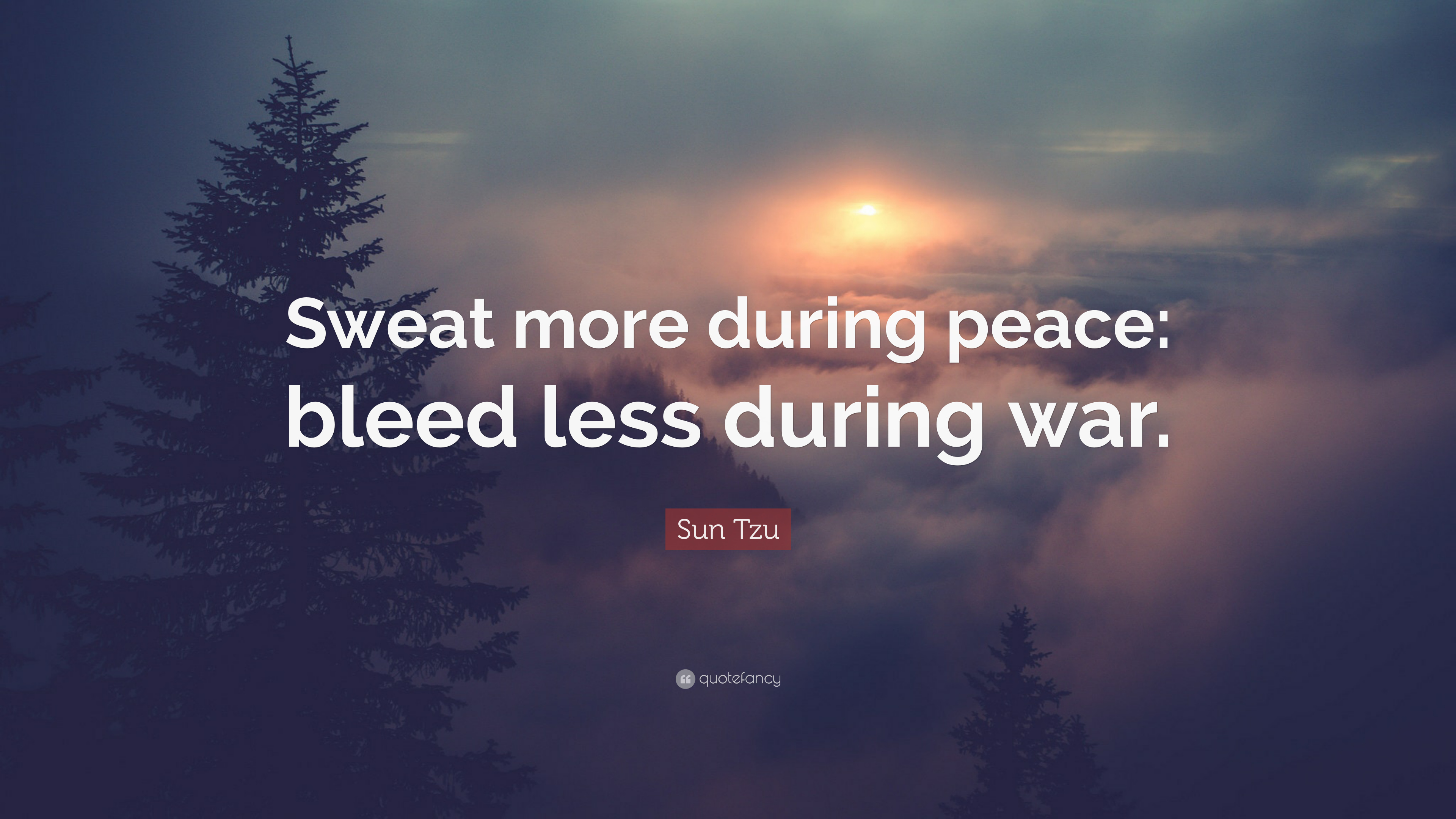 the more you sweat in peace the less you bleed in war