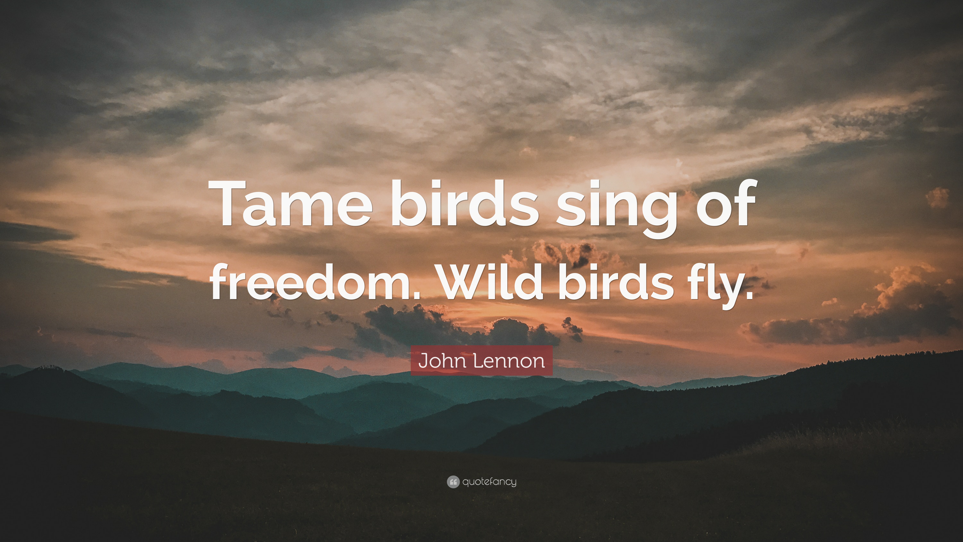 John Lennon Quote Tame Birds Sing Of Freedom Wild Birds Fly 12