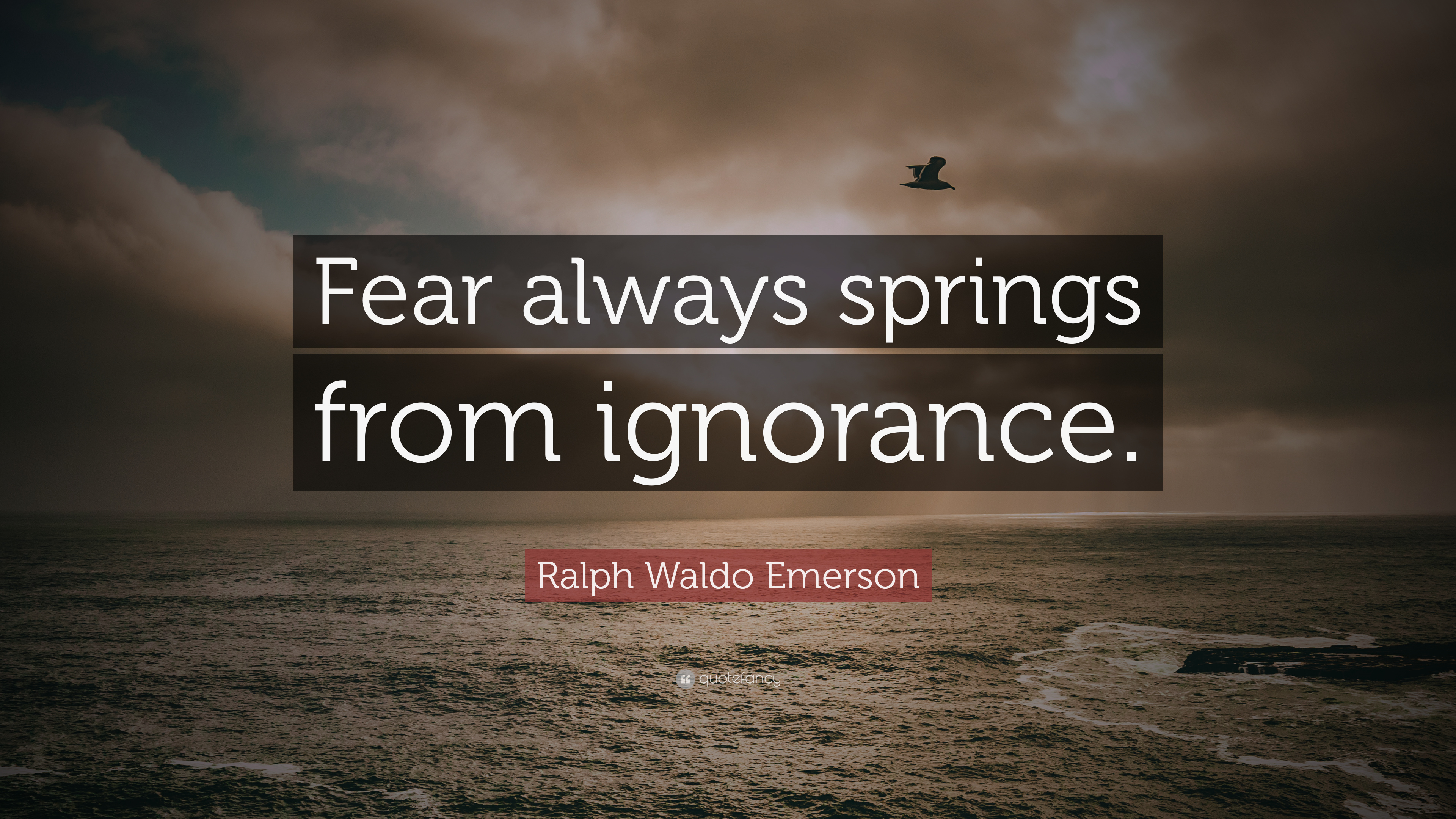 "Ralph Waldo Emerson Quote: ""Fear Always Springs From"