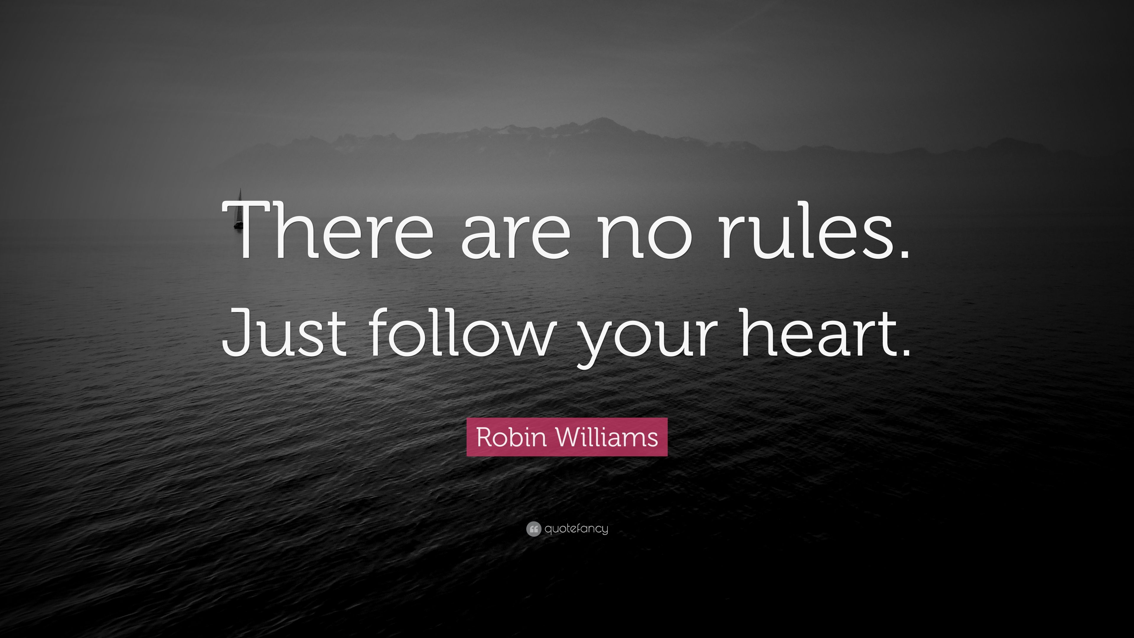 """Robin Williams Quote: """"There are no rules. Just follow ..."""