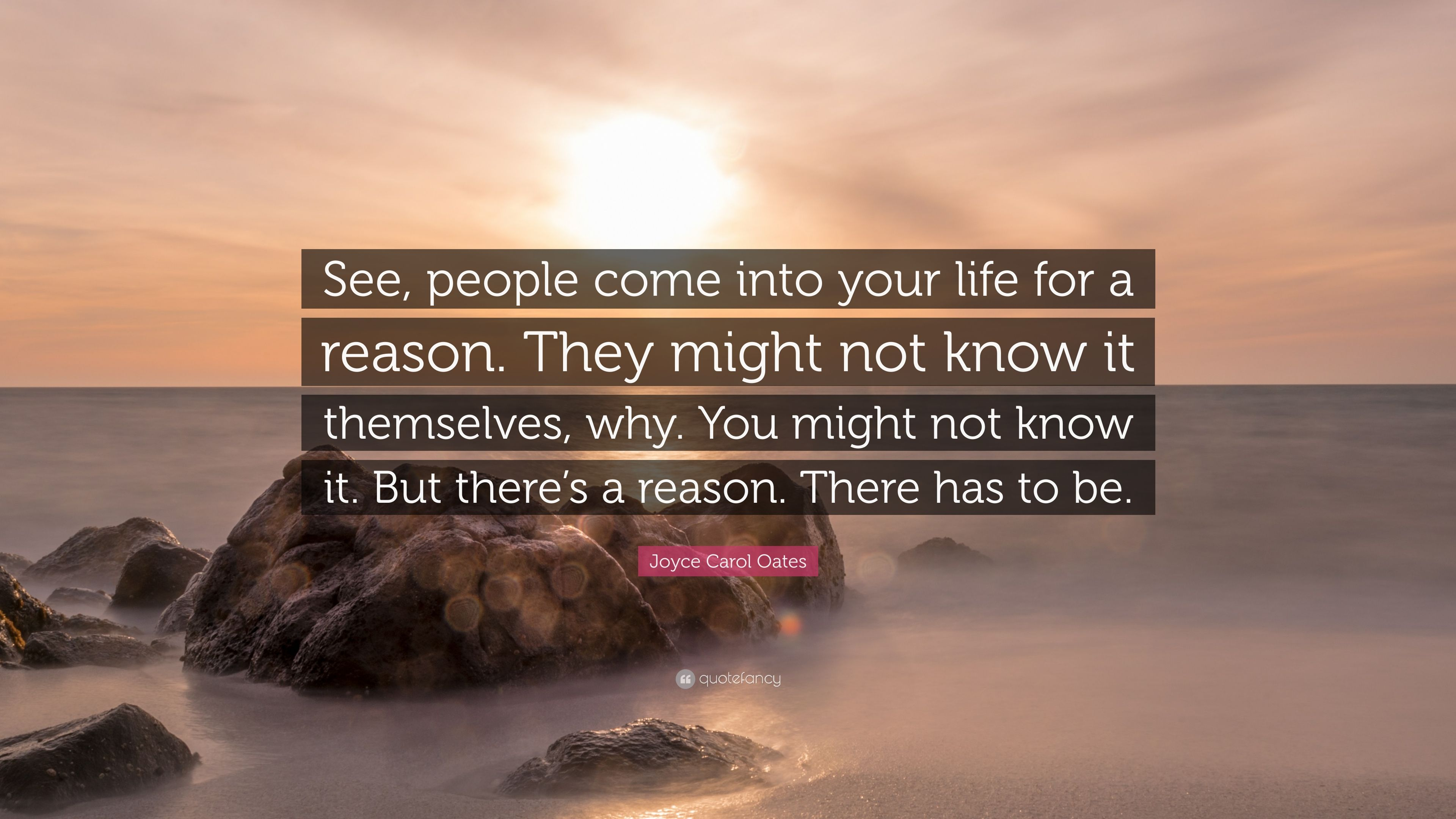 Joyce Carol Oates Quote See People Come Into Your Life For A