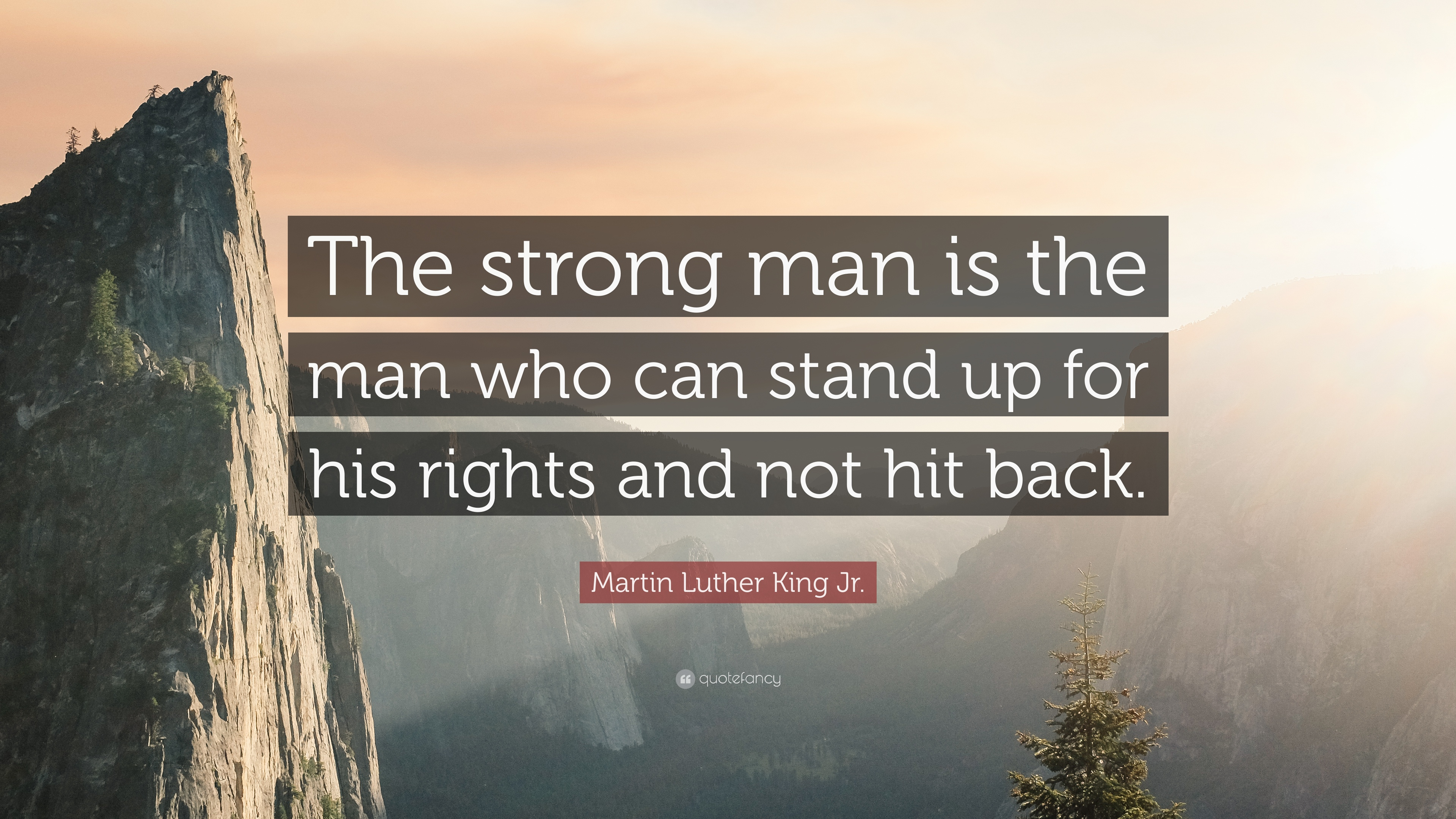 """Martin Luther King Jr. Quote: """"The strong man is the man who ..."""