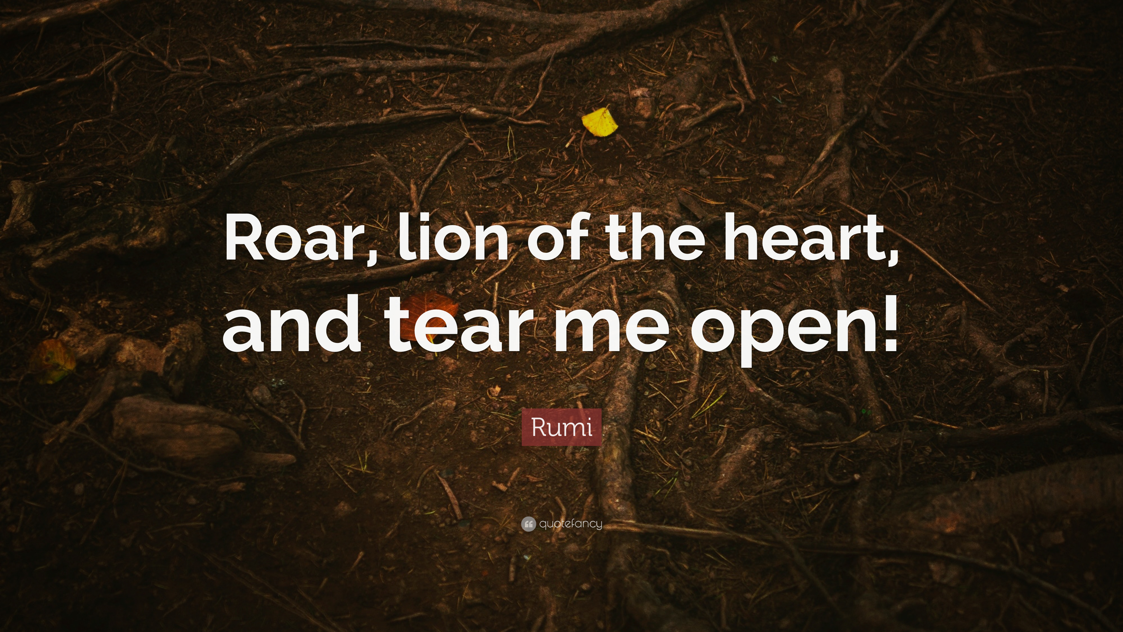 Rumi Quote Roar Lion Of The Heart And Tear Me Open 12