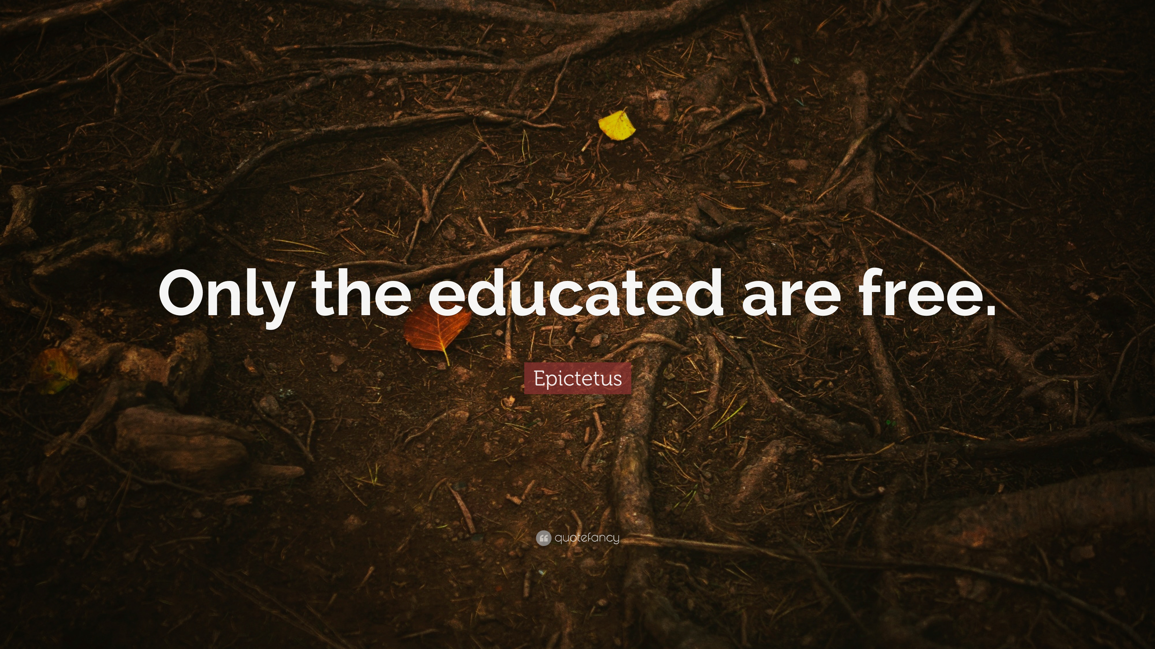 Epictetus Quote Only The Educated Are Free 9 Wallpapers