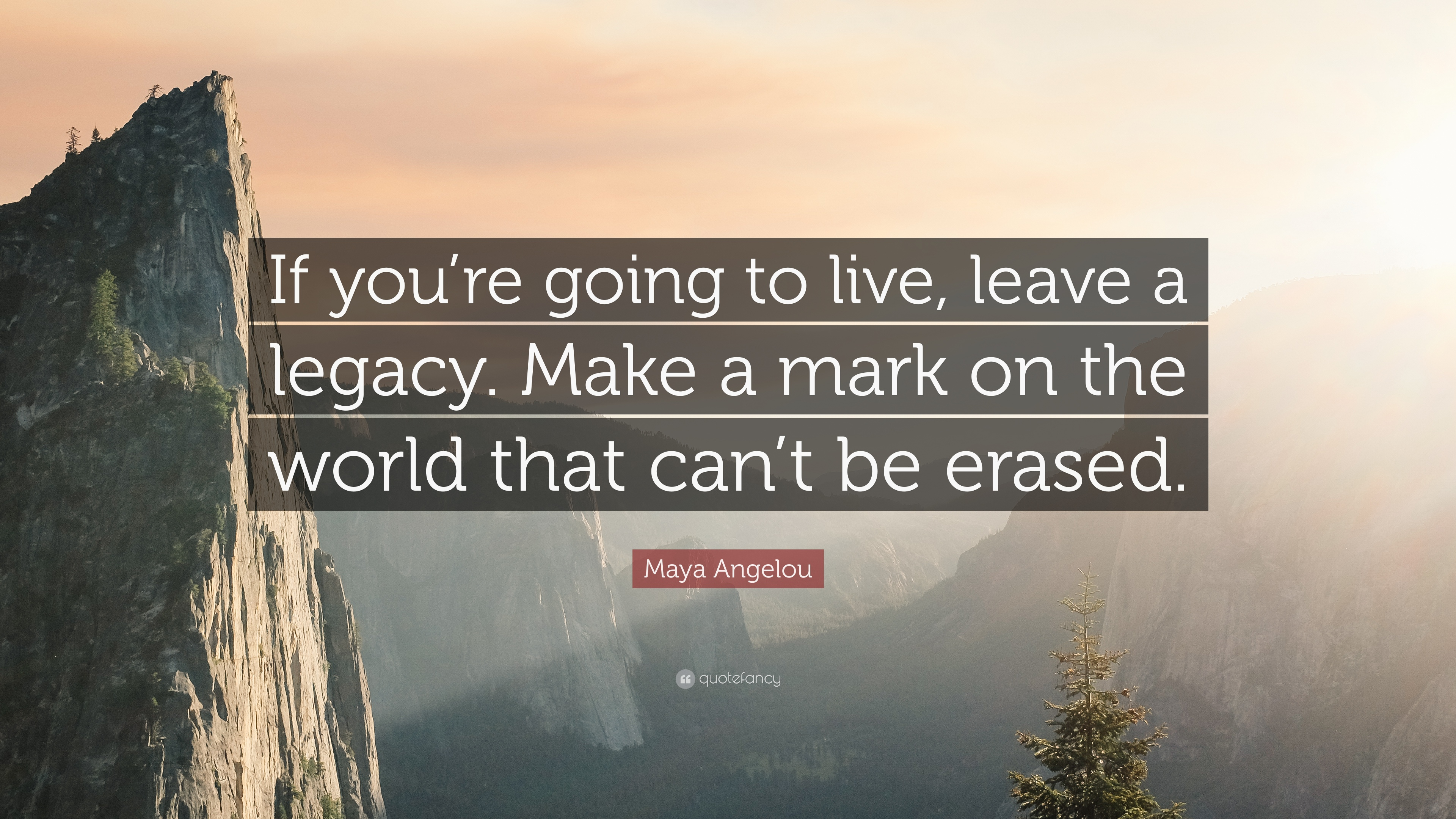 Maya Angelou Quote If Youre Going To Live Leave A Legacy Make A