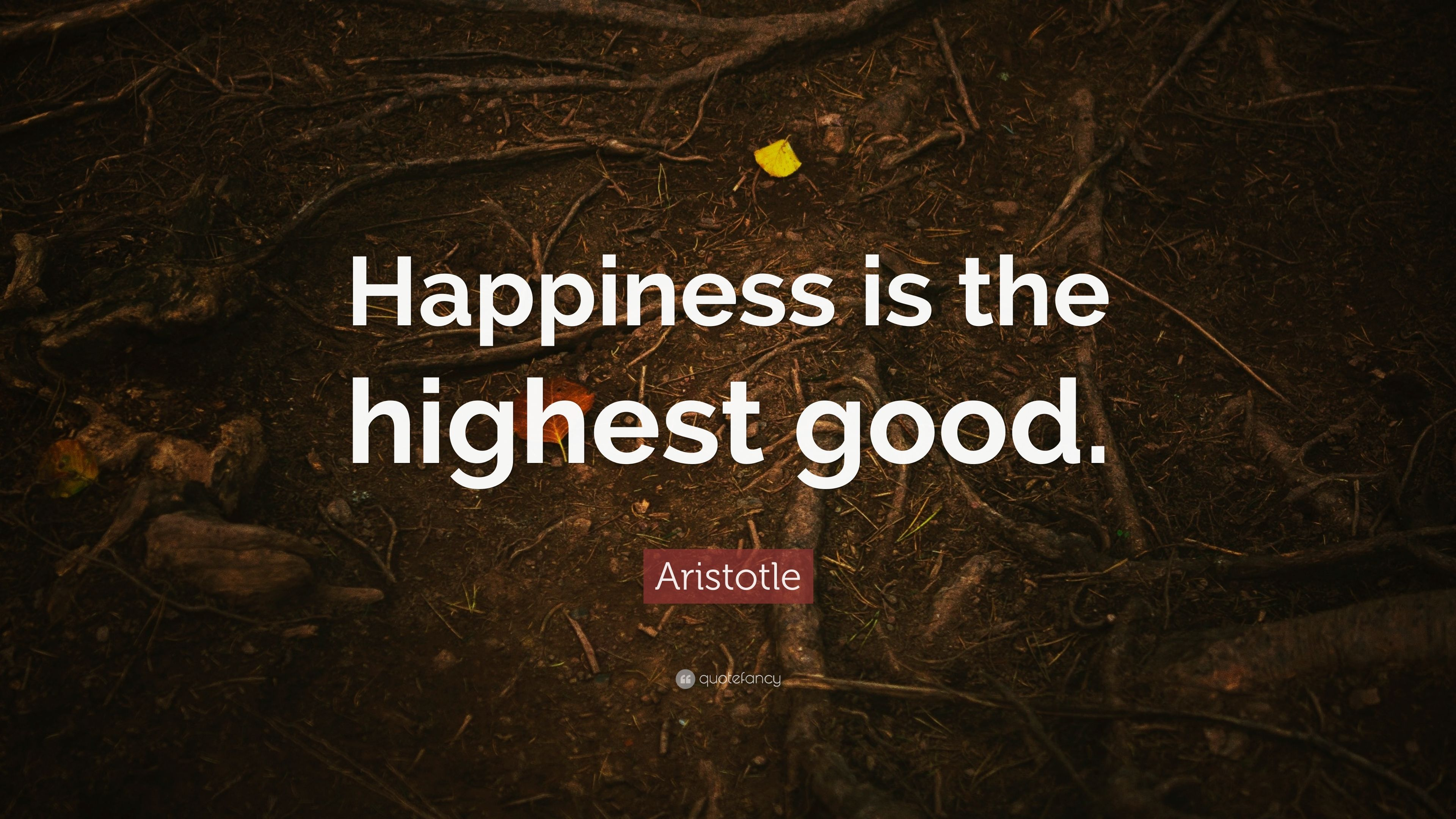 """aristotle the good life Danielle kutner moral and social philosophy midterm paper: plato v aristotle a good life is appealing to all human beings it is the definition of this """"good."""