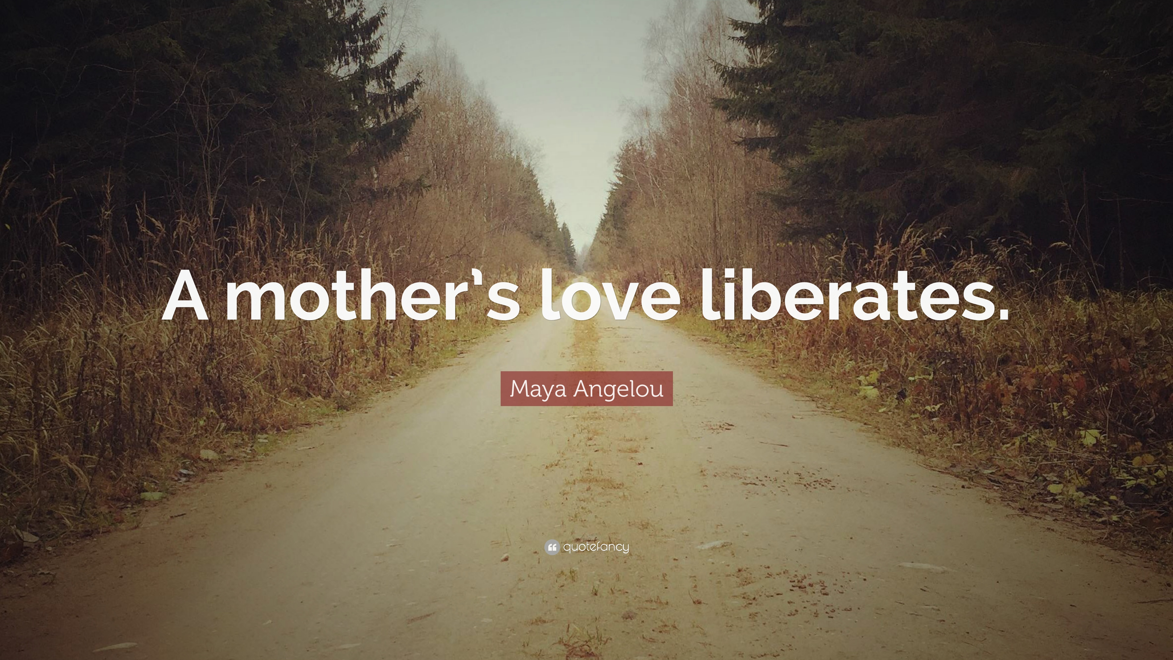 "Quotes About A Mother's Love Maya Angelou Quote ""A Mother's Love Liberates."" 7 Wallpapers"