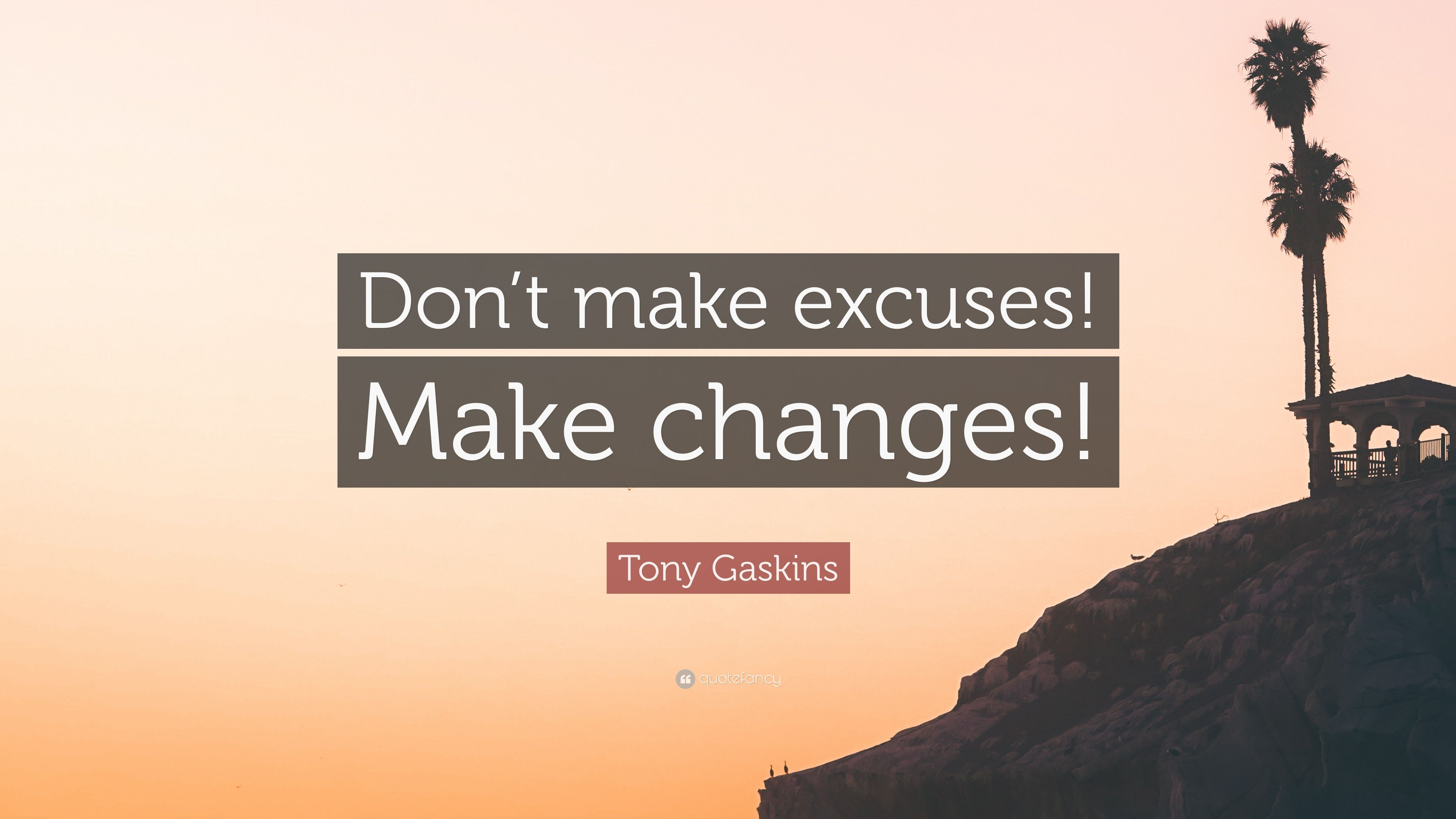 Tony Gaskins Quote: Dont make excuses! Make changes