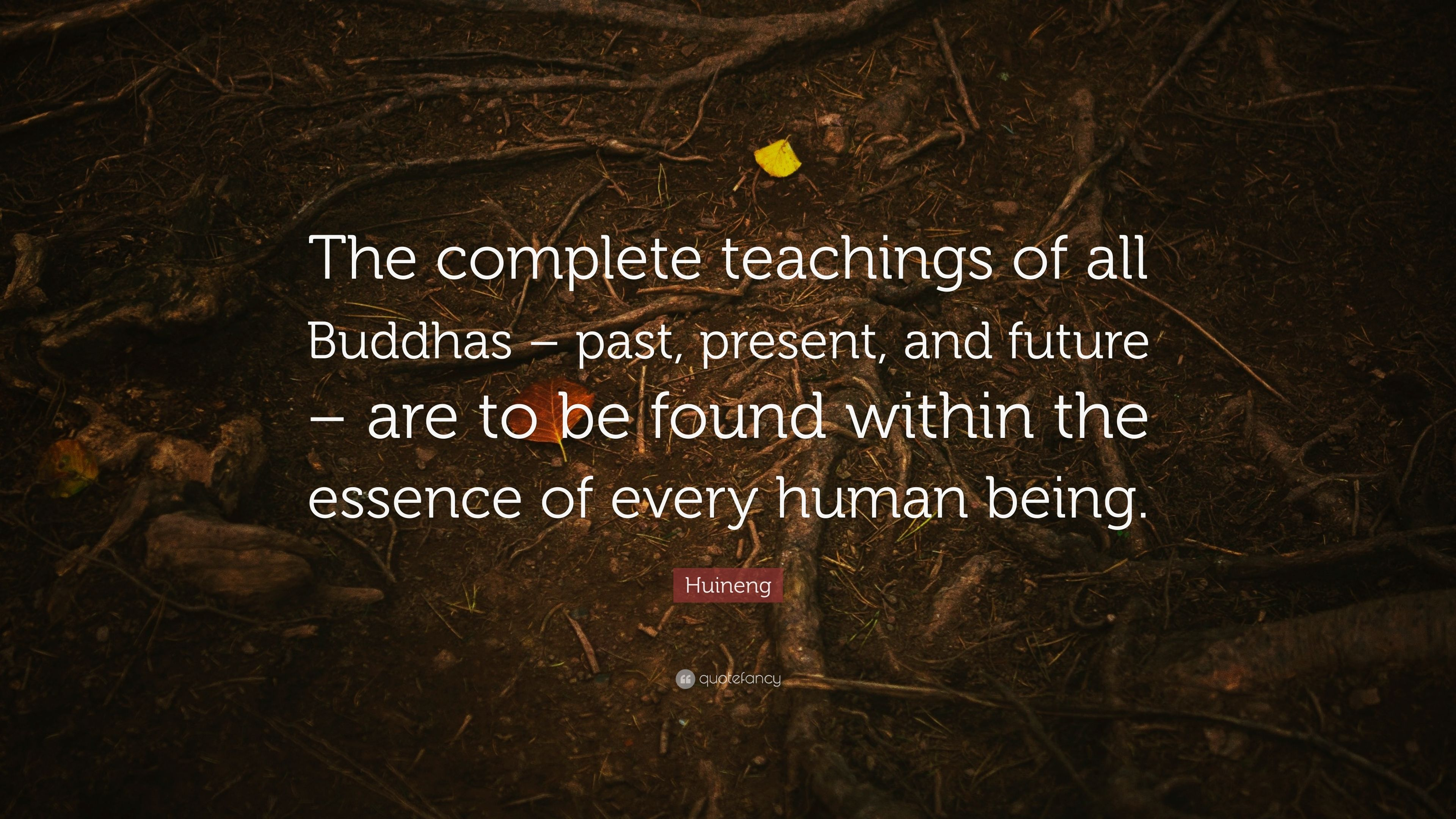 Huineng Quote The Complete Teachings Of All Buddhas Past