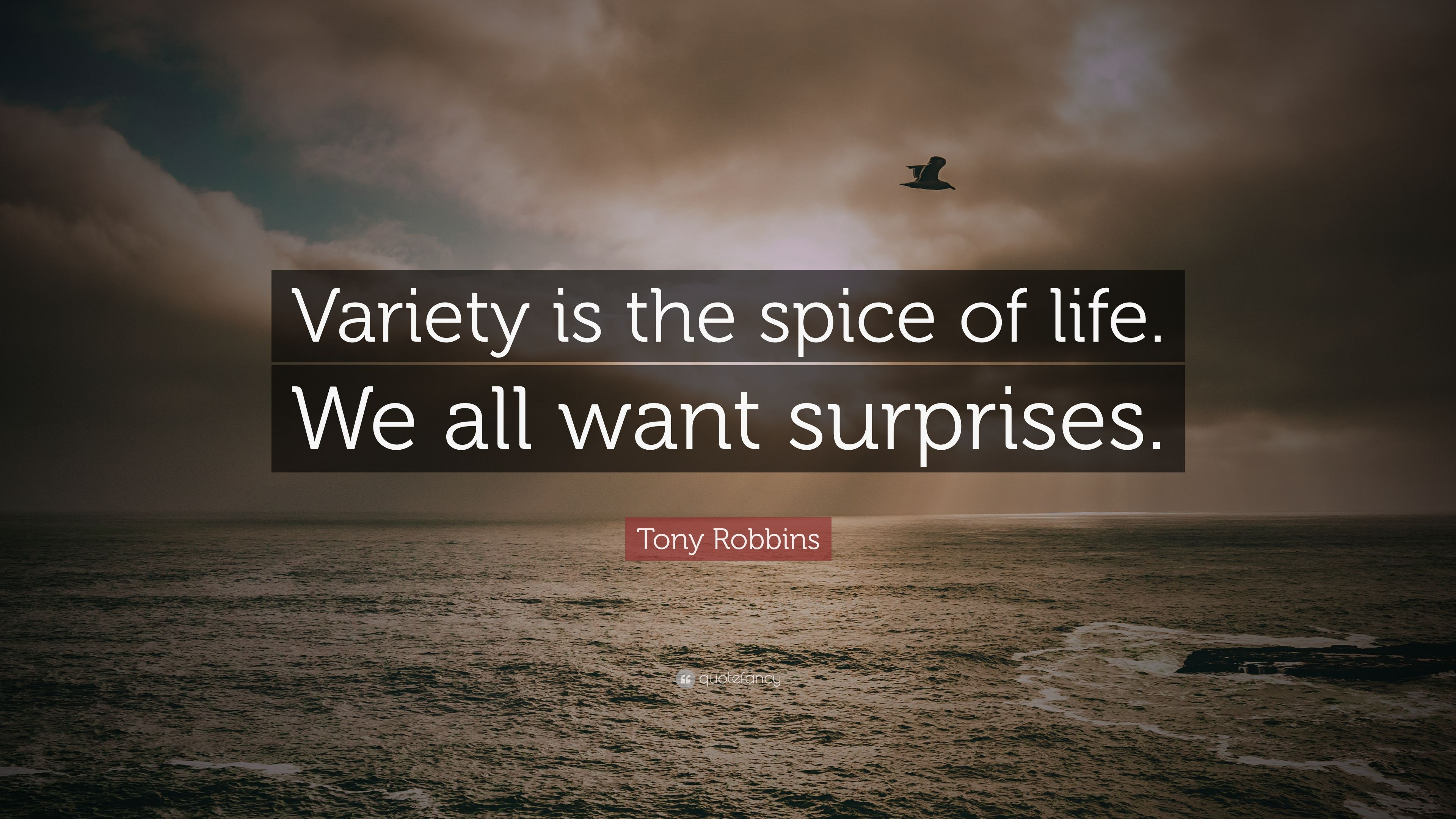 "Spice Of Life Quote Tony Robbins Quote ""Variety Is The Spice Of Lifewe All Want"