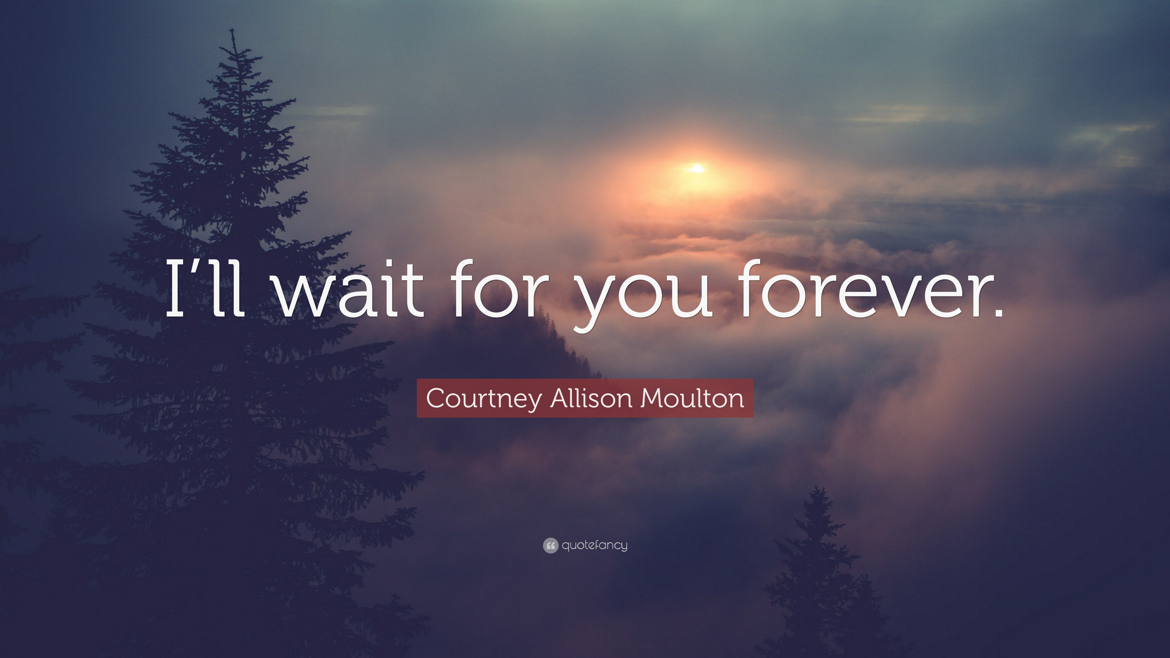 """Waiting For Forever Quotes: Courtney Allison Moulton Quote: """"I'll Wait For You Forever"""