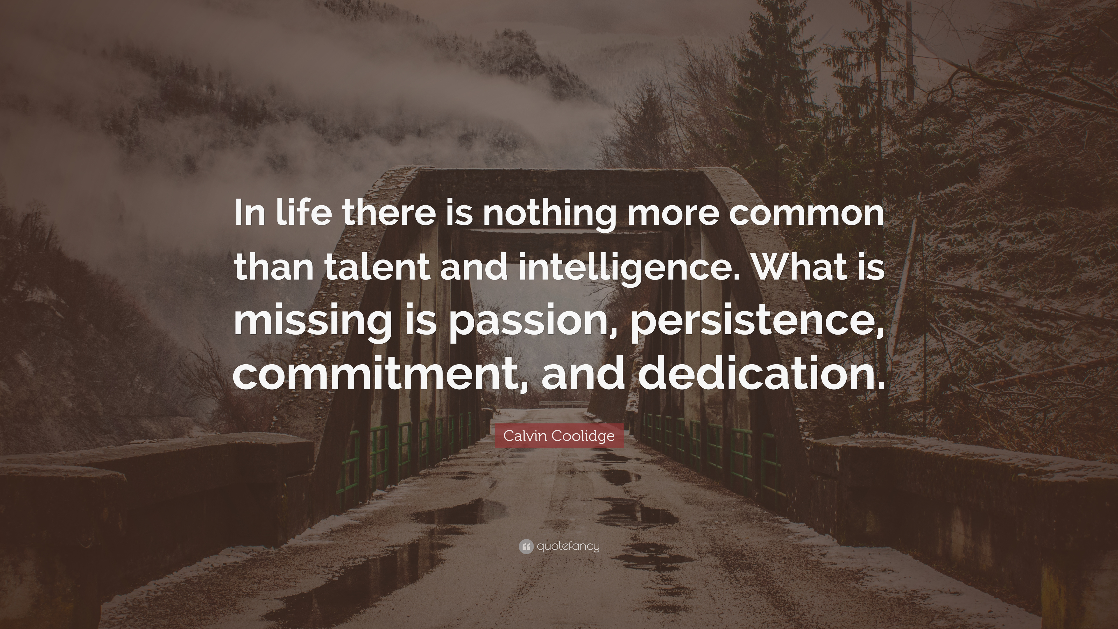 Calvin Coolidge Quotes Persistence | Calvin Coolidge Quote In Life There Is Nothing More Common Than