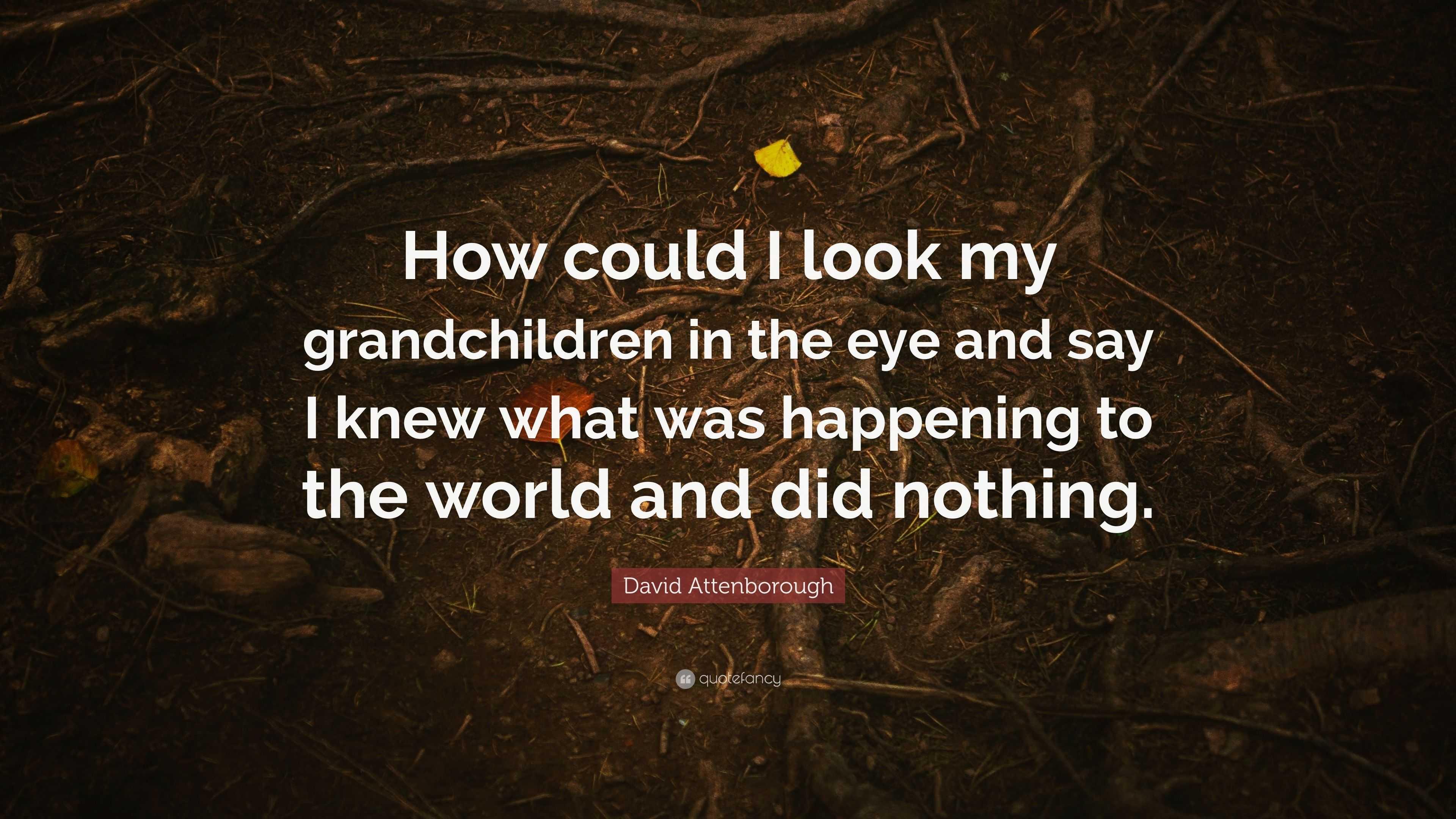 "David Attenborough Quote: ""How could I look my grandchildren ..."