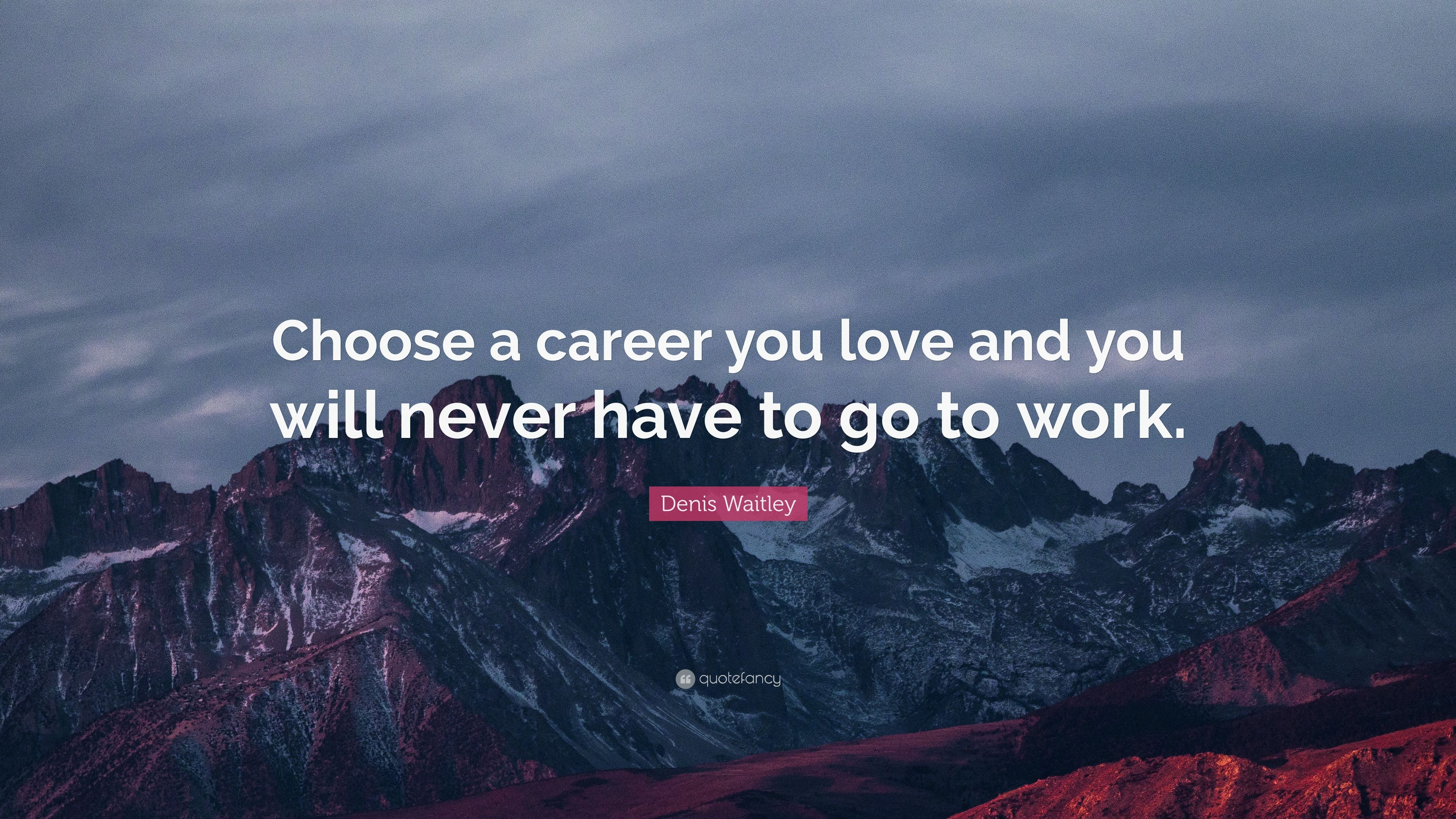 Denis Waitley Quote Choose A Career You Love And You Will