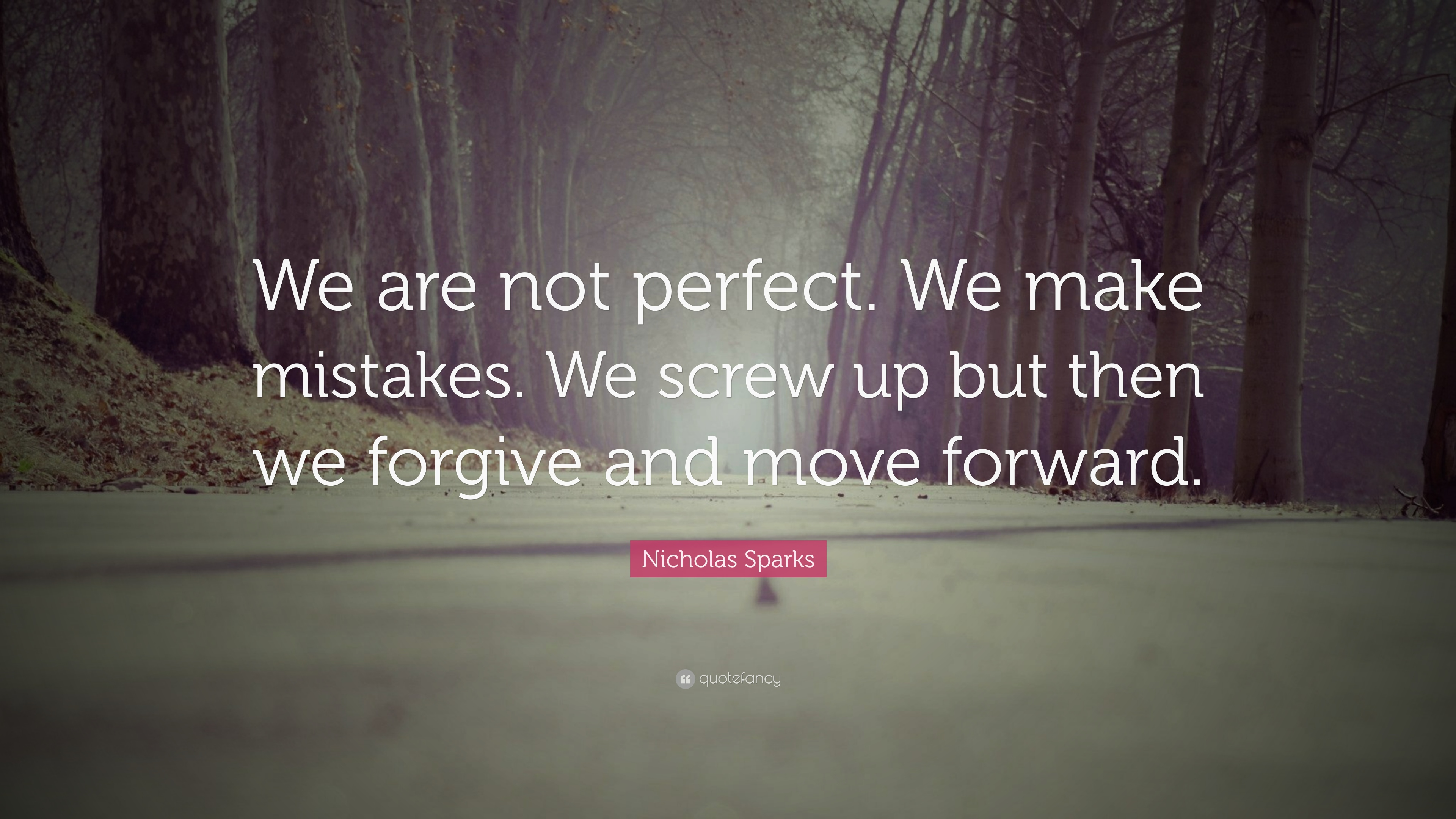 Nicholas Sparks Quote We Are Not Perfect We Make Mistakes We