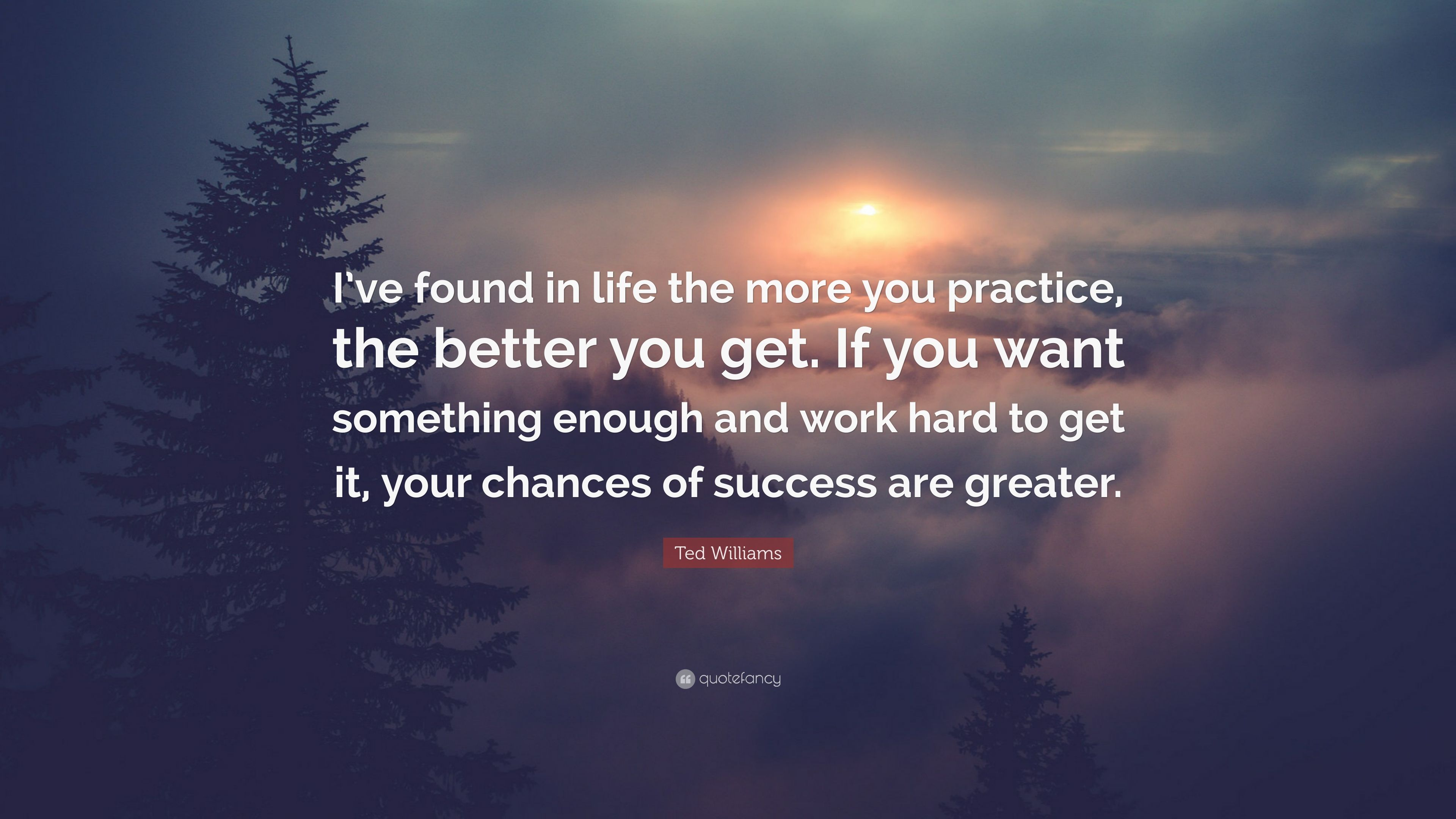Ted Williams Quote: U201cIu0027ve Found In Life The More You Practice,