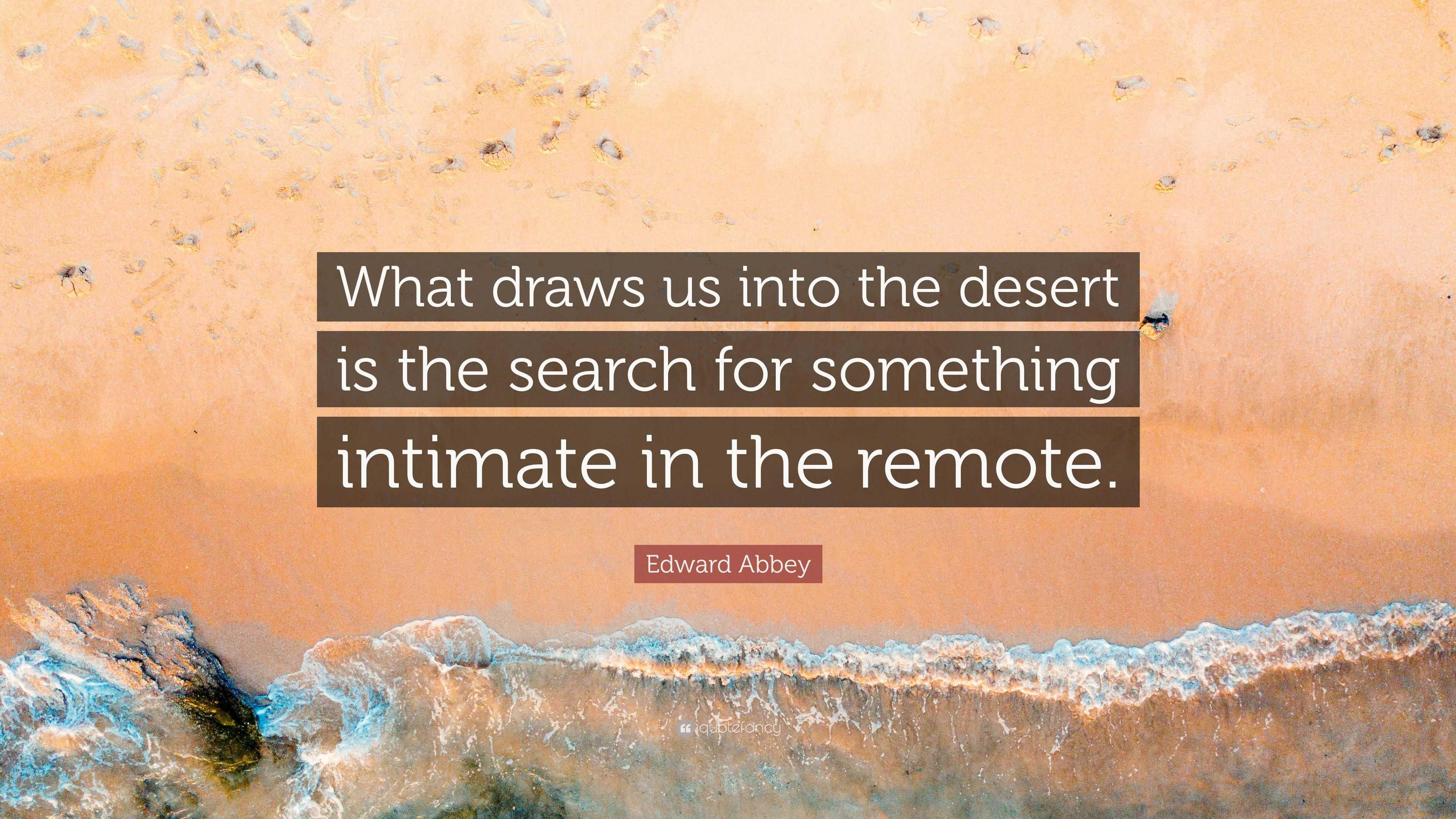 bfc8351c3b6b217edced9b404ab29067.jpg (735×1102 ... |Into The Desert Quotes