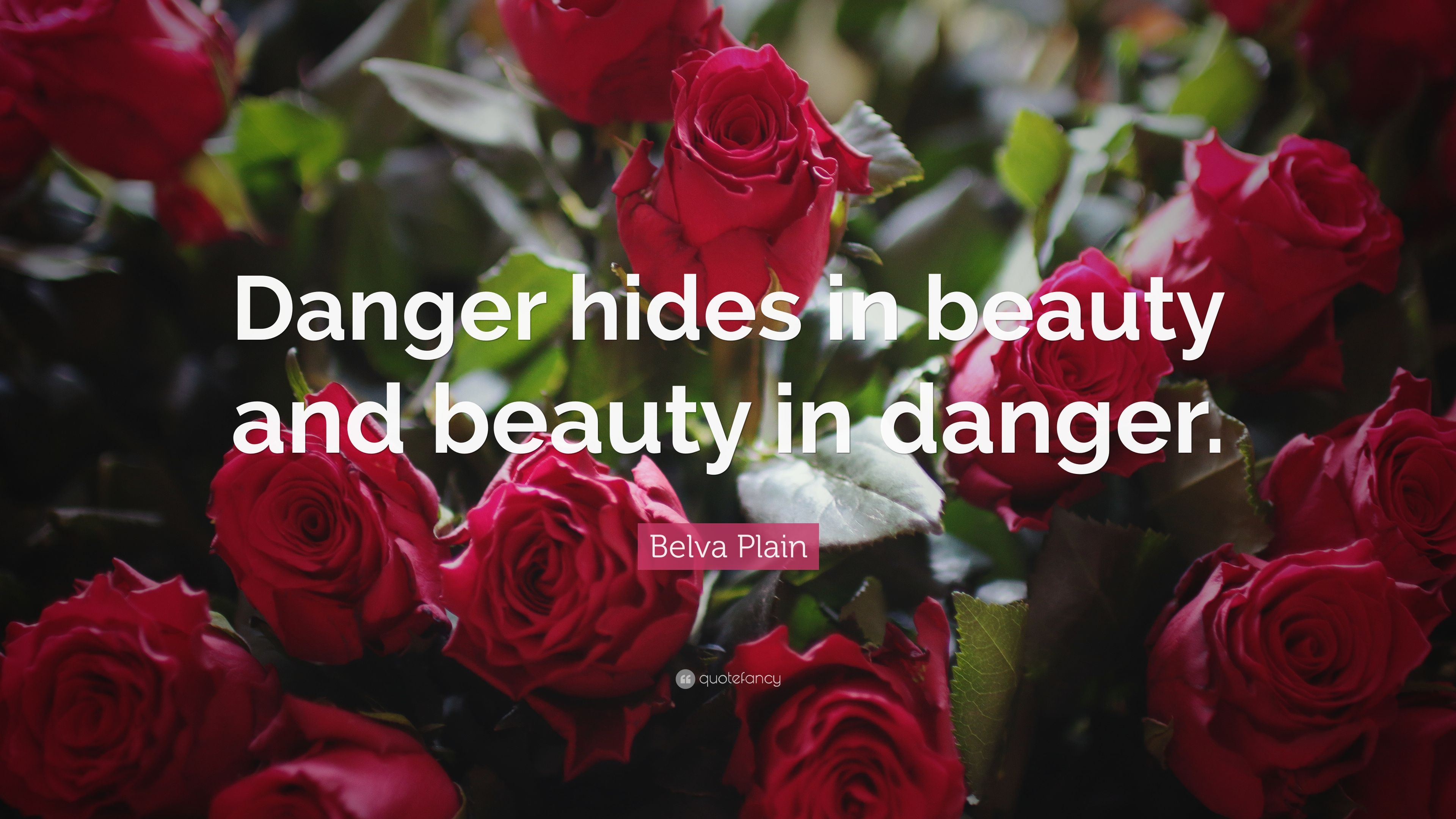 Flower And Beauty Quotes Choice Image Flowers Bouquet Decoration Beautiful About Gallery Images