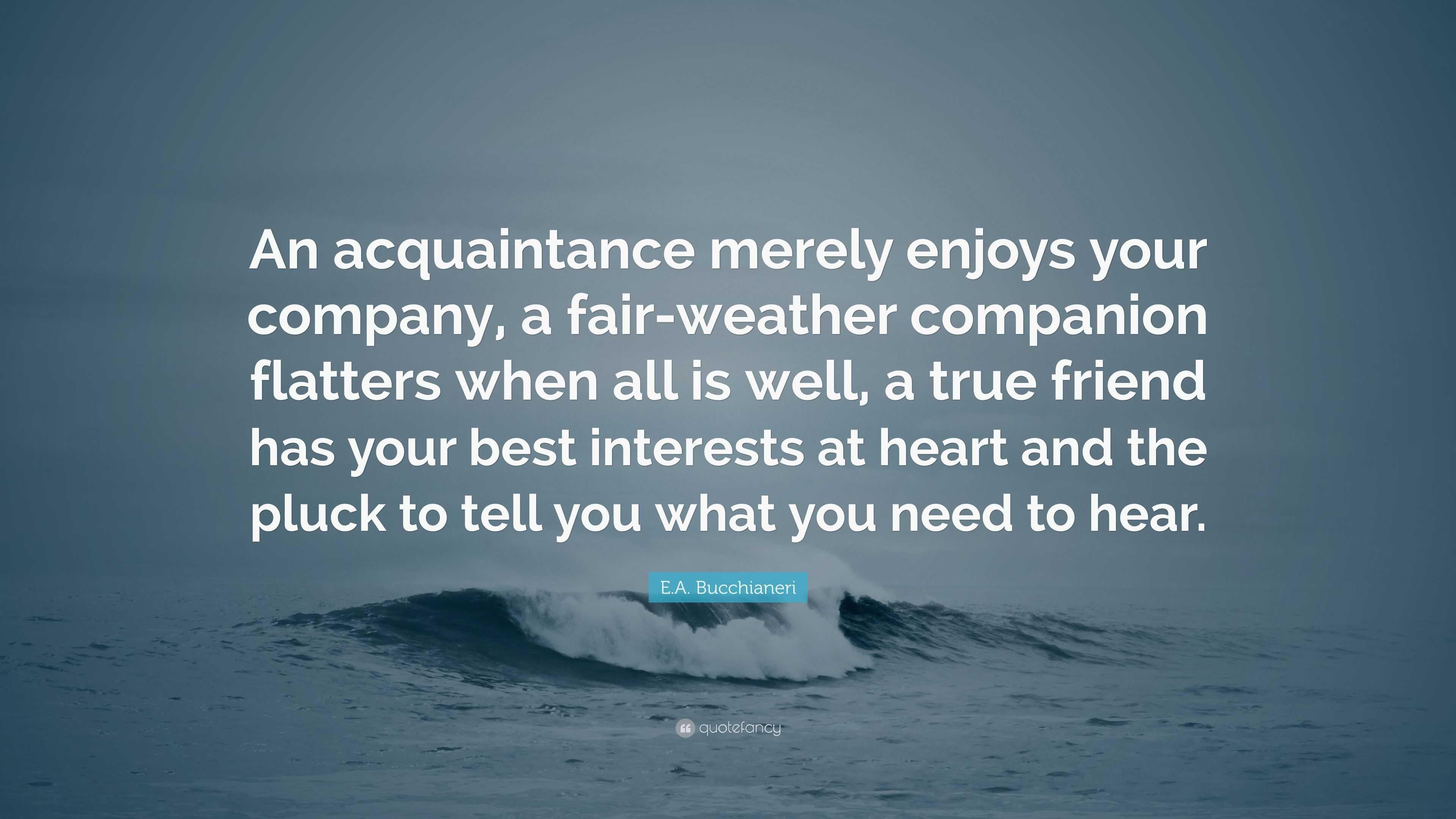 "E.A. Bucchianeri Quote: ""An acquaintance merely enjoys your ..."