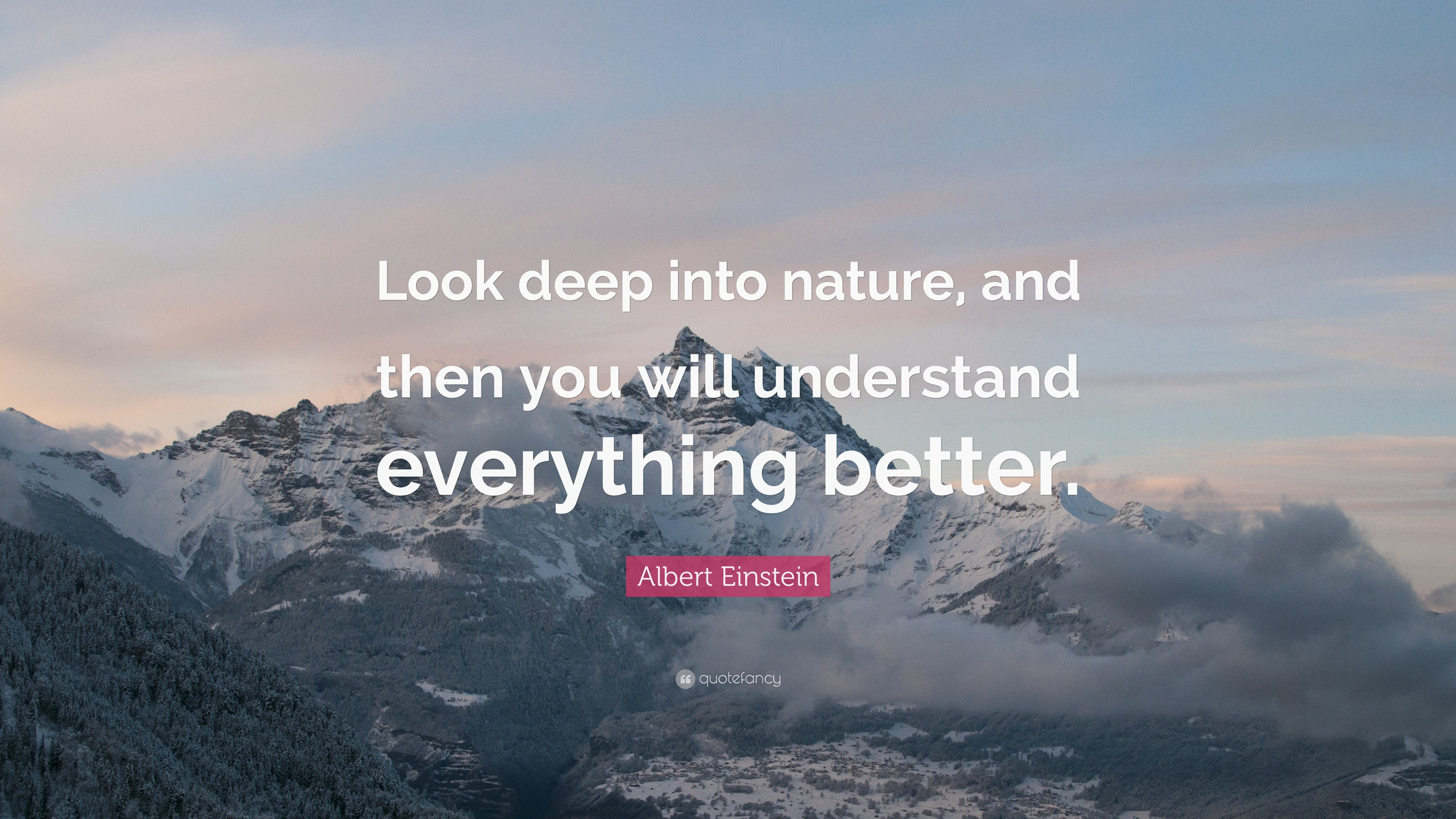 Albert Einstein Quote Look Deep Into Nature And Then You Will