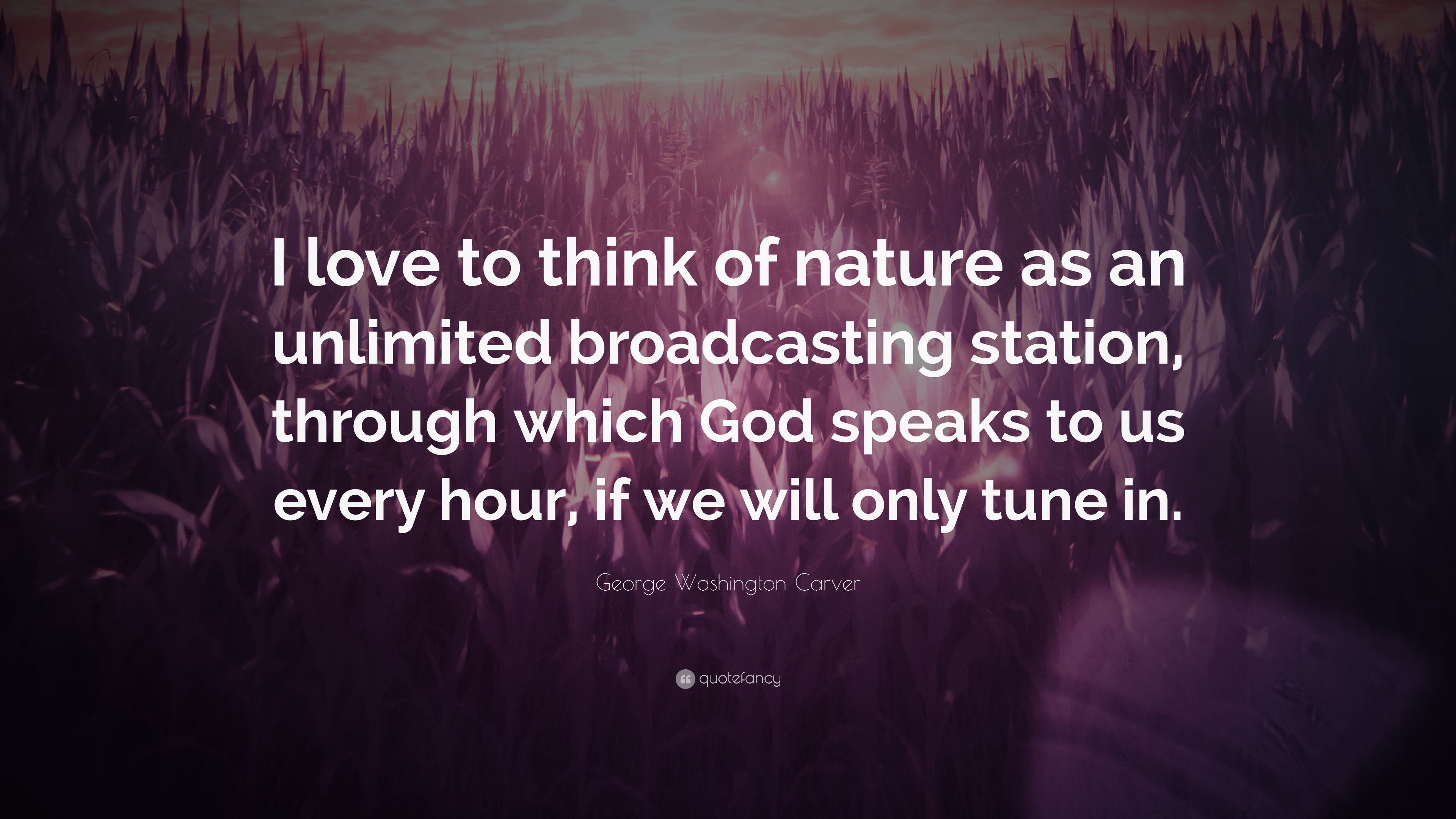 george washington carver quote i love to think of nature