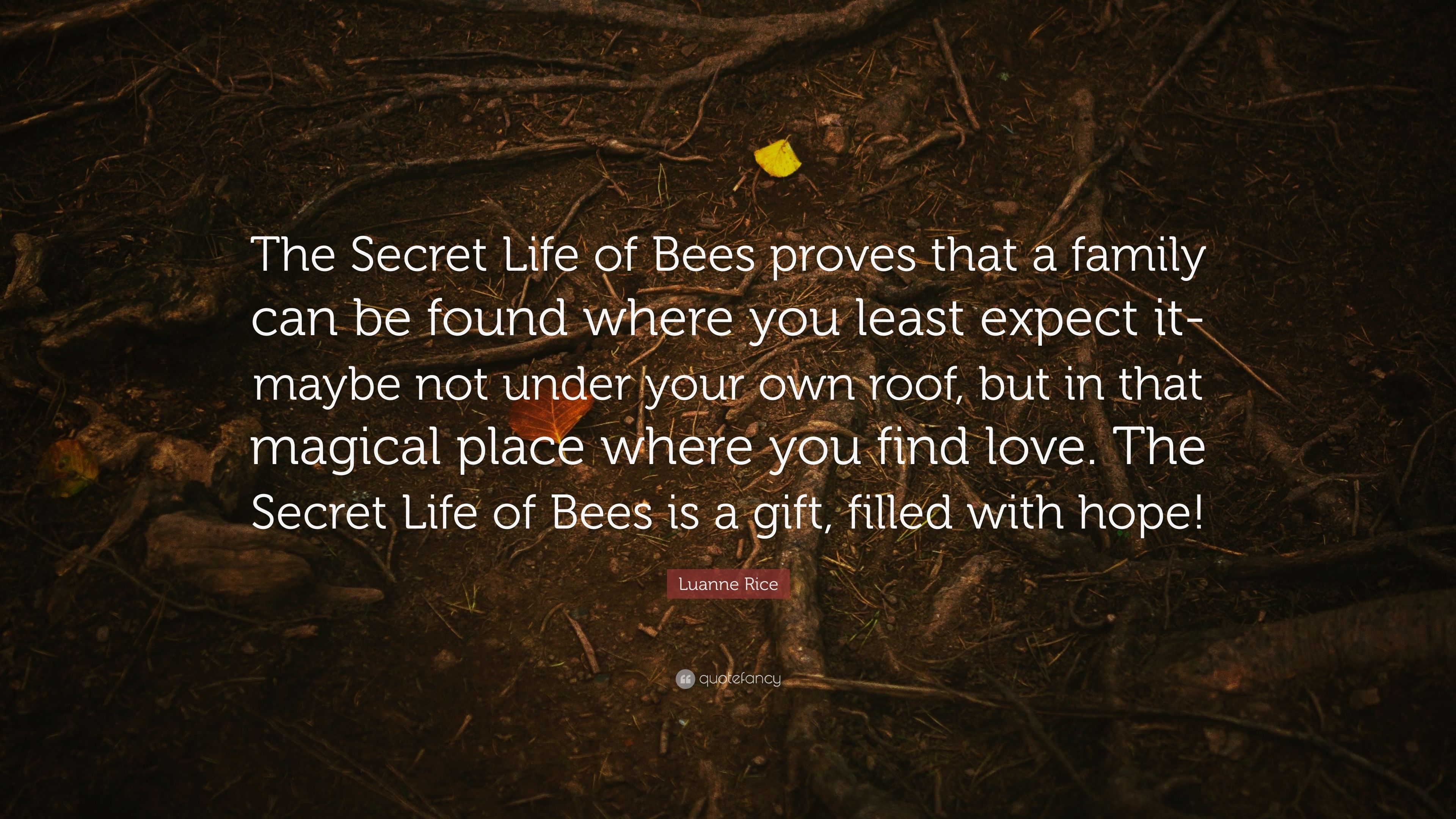 "Quotes In The Secret Life Of Bees Mesmerizing Luanne Rice Quote ""The Secret Life Of Bees Proves That A Family"