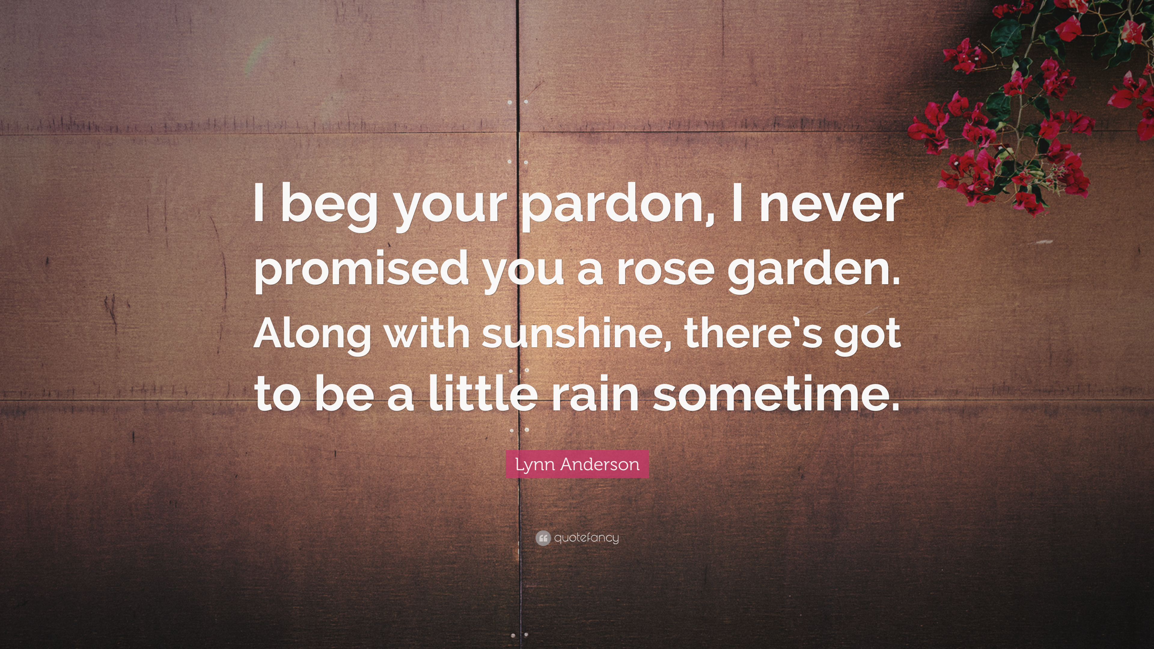 "Lynn Anderson Quote: ""I beg your pardon, I never promised you a rose ..."