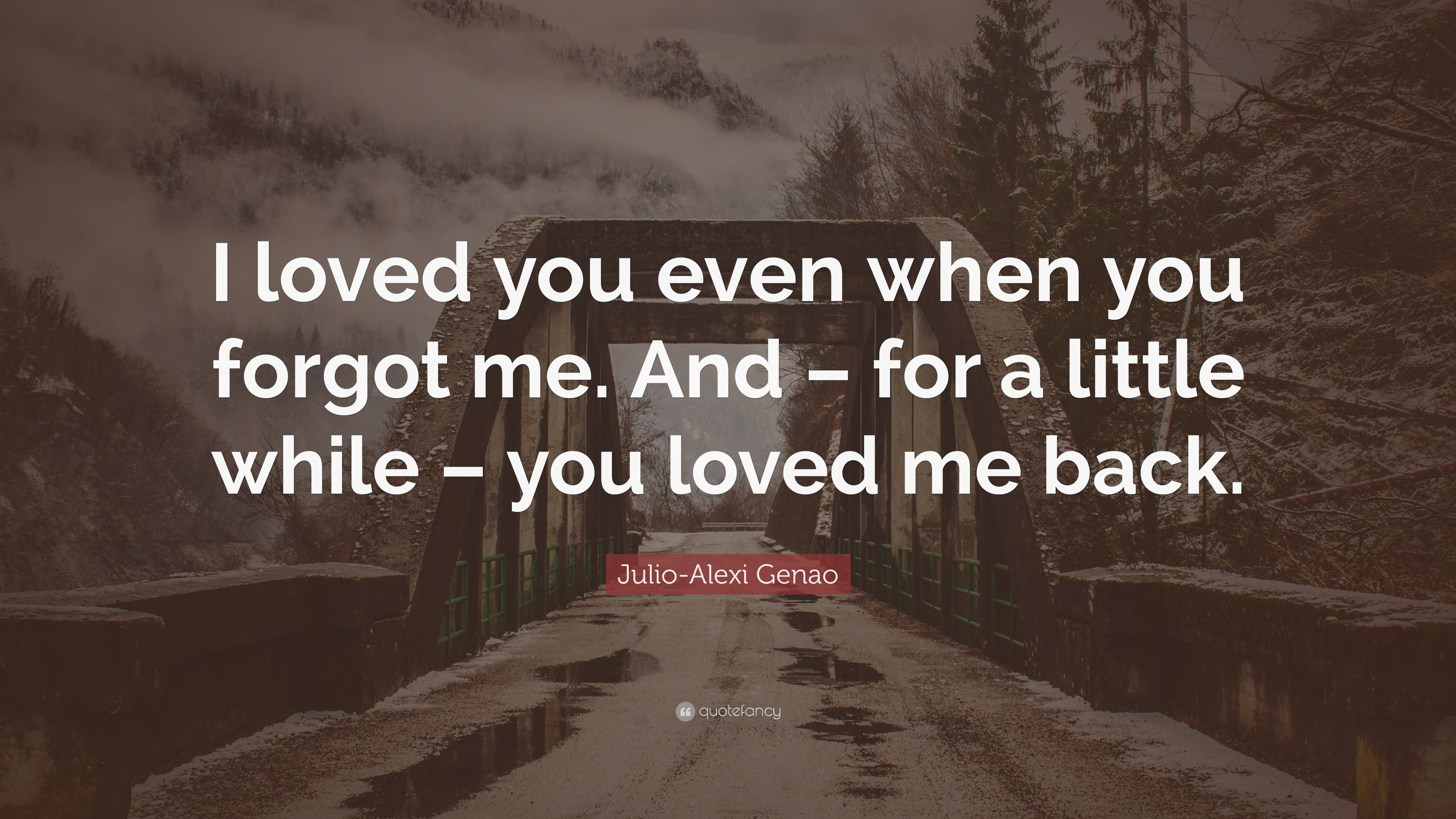 Julio Alexi Genao Quote I Loved You Even When You Forgot Me And