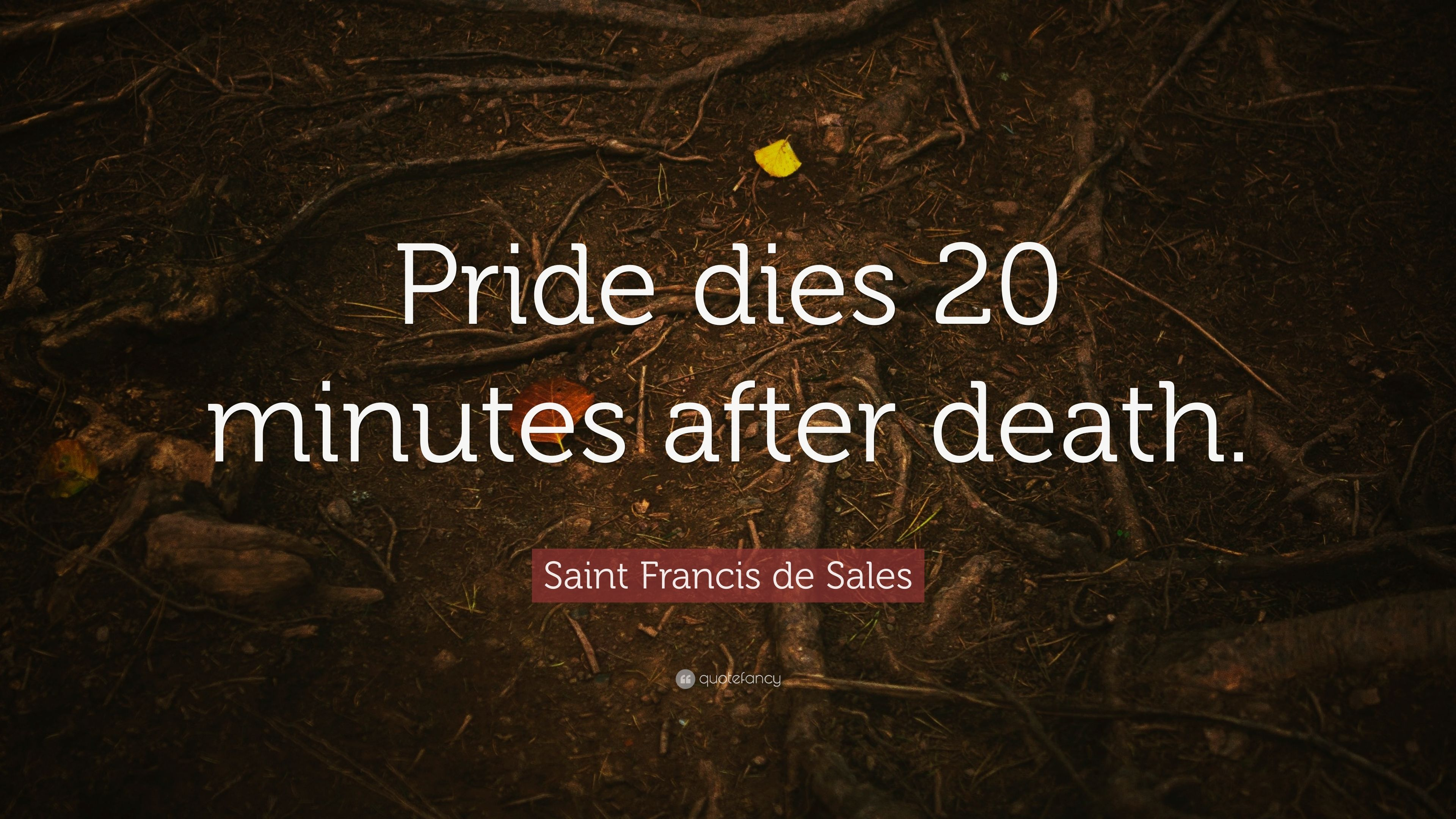 Image result for st francis de sales quote