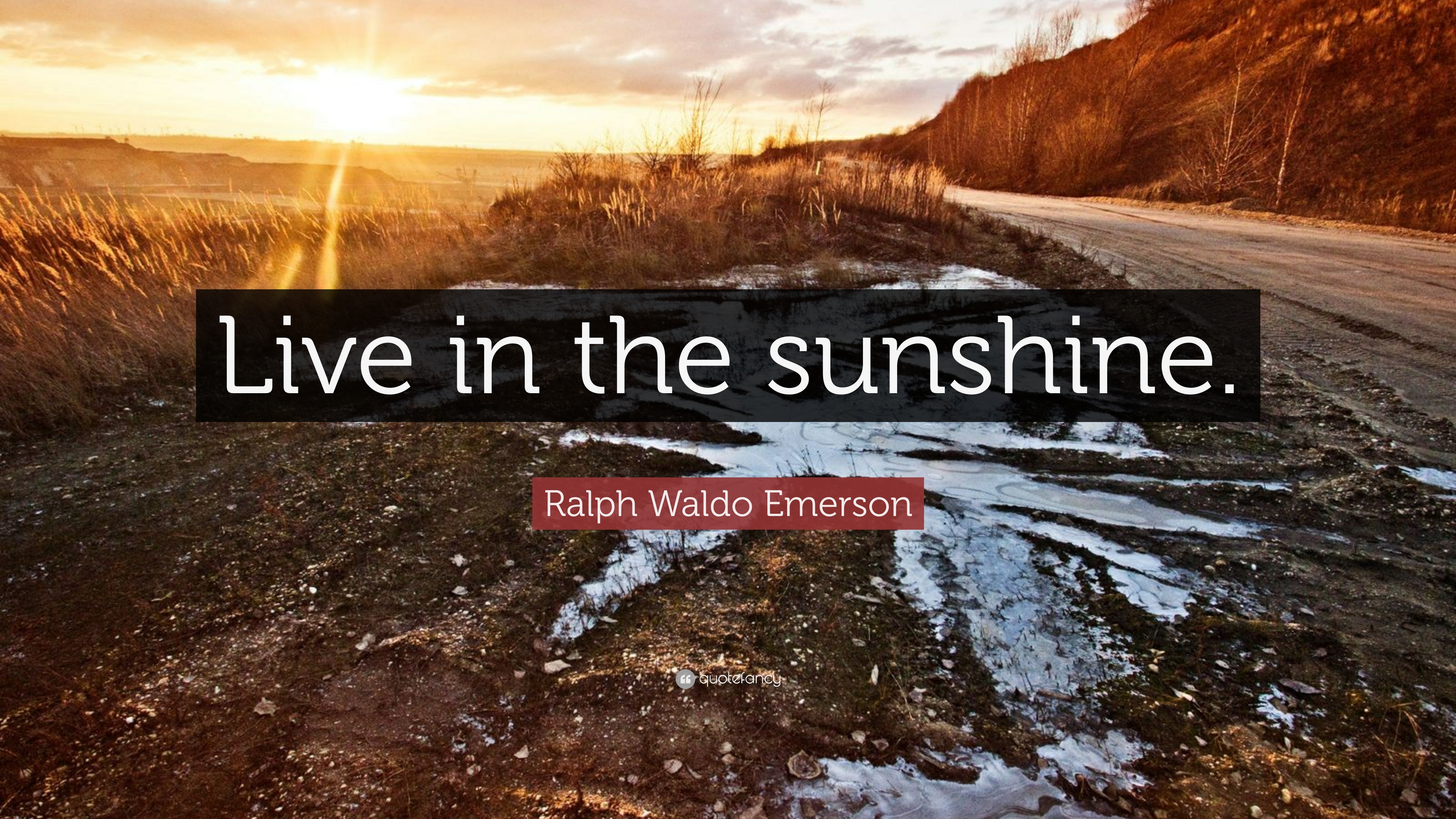 Ralph Waldo Emerson Quote Live In The Sunshine 9 Wallpapers