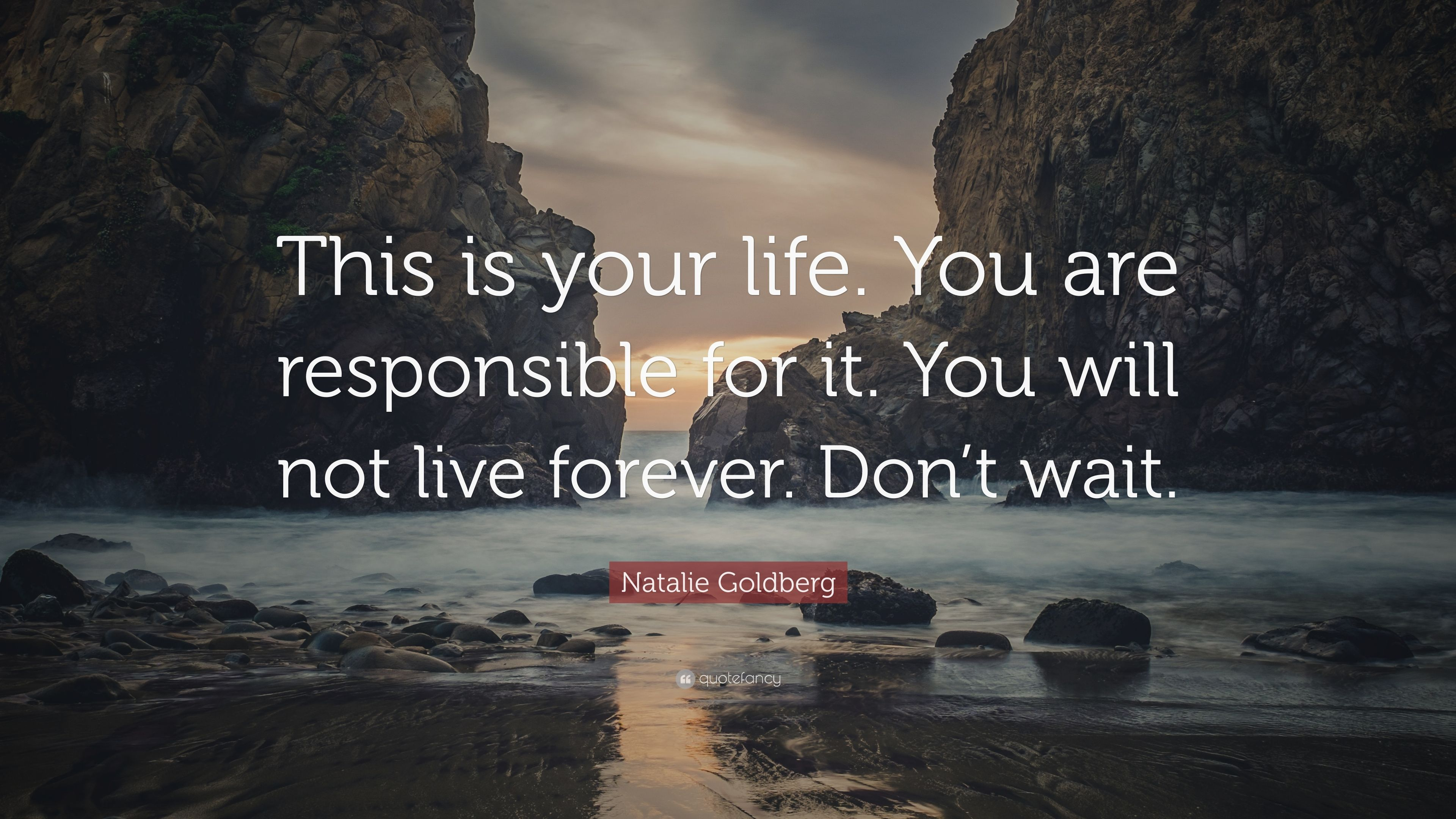 "This Is Your Life Quote Natalie Goldberg Quote ""This Is Your Lifeyou Are Responsible"