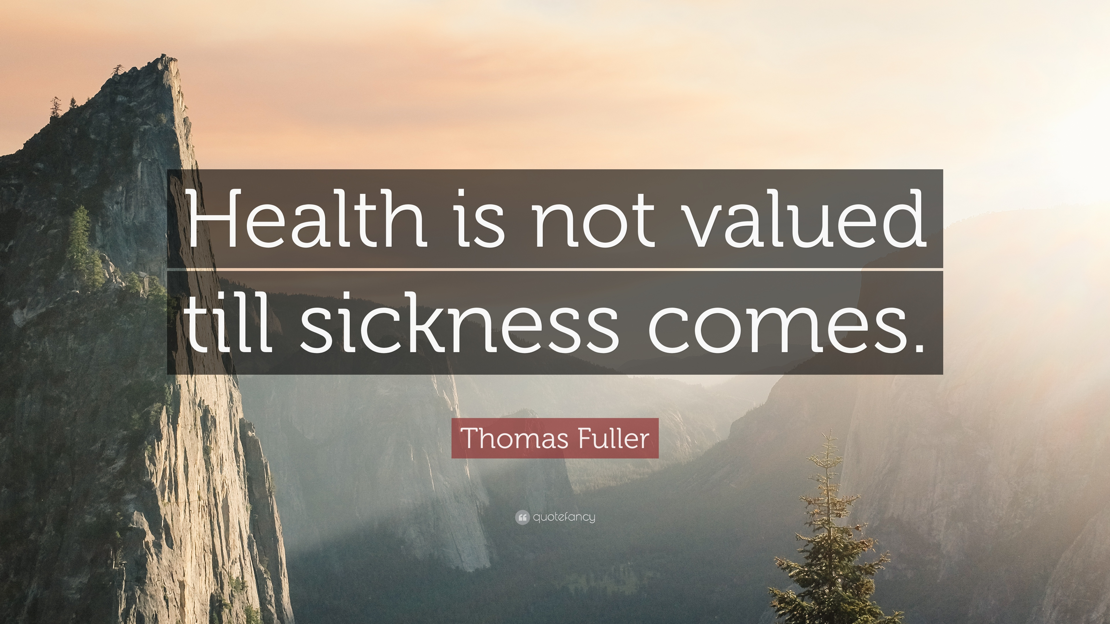 """health is not valued till sickness """"to keep the body in good health is a duty, otherwise we shall not be able to  keep our mind strong and clear"""" buddha """"health is not valued till sickness  comes."""