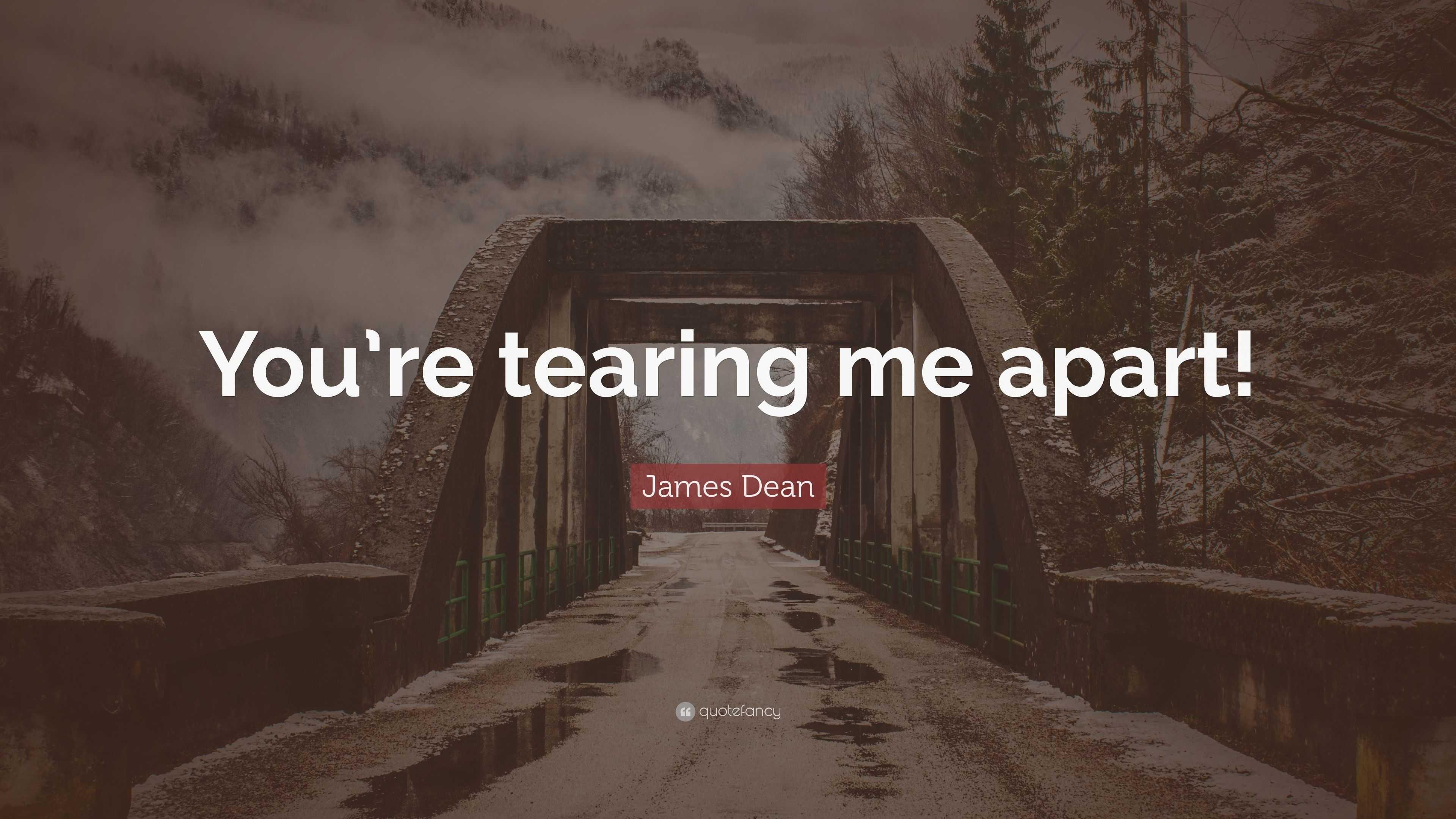 Tearing me apart lyrics