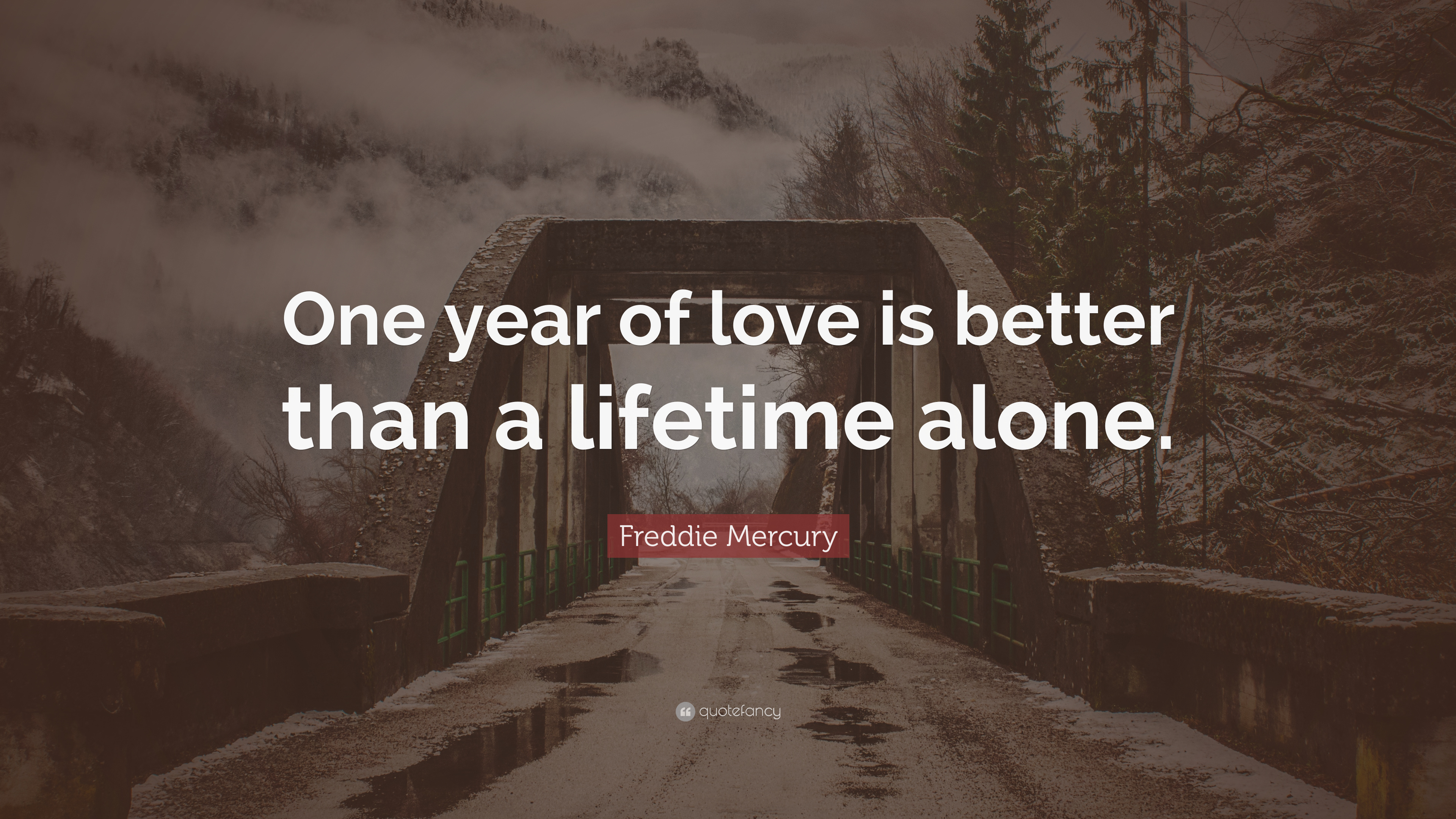 Freddie Mercury Quote: U201cOne Year Of Love Is Better Than A Lifetime Alone.