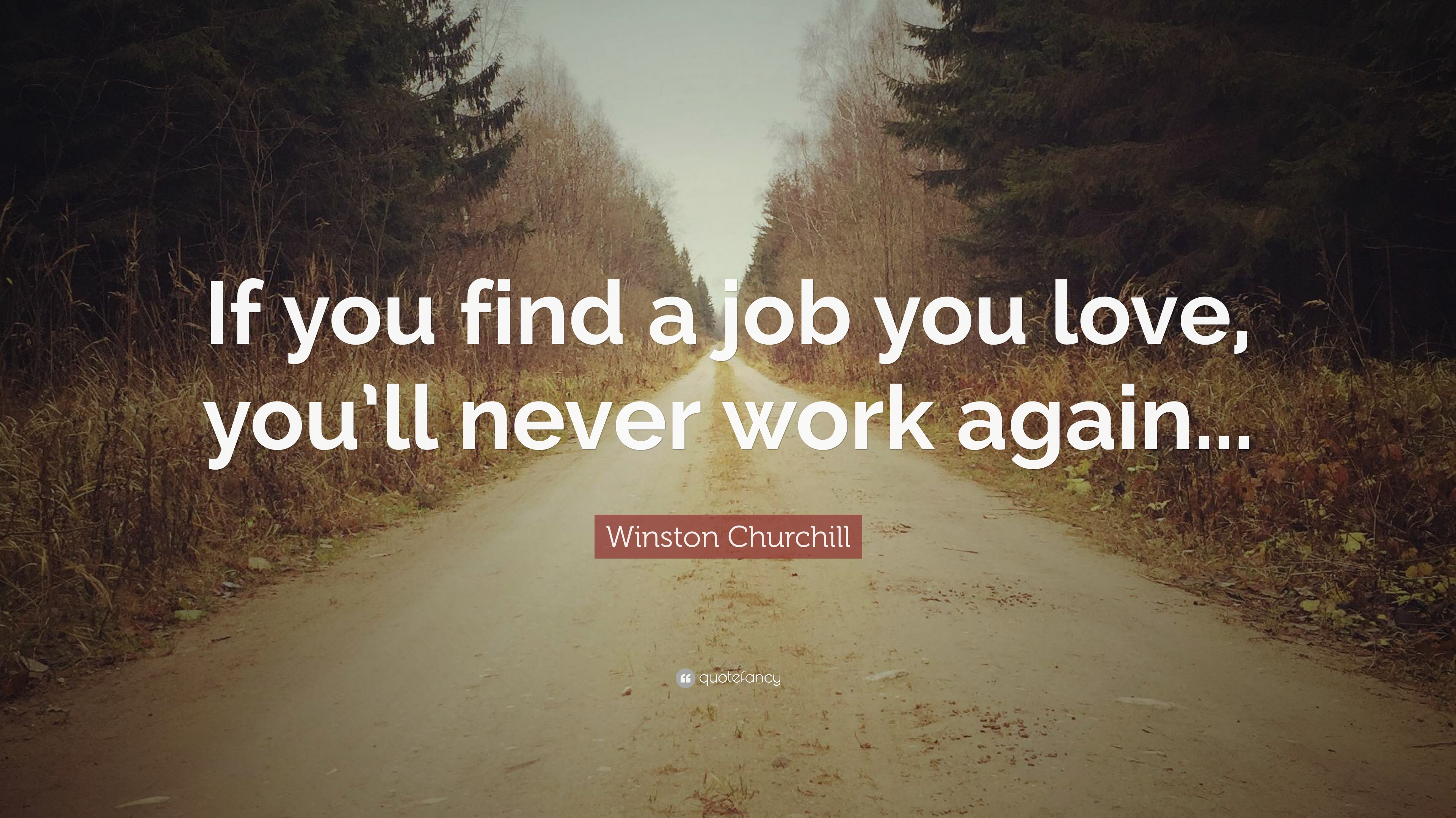 "Winston Churchill Love Quotes Adorable Winston Churchill Quote ""If You Find A Job You Love You'll Never"