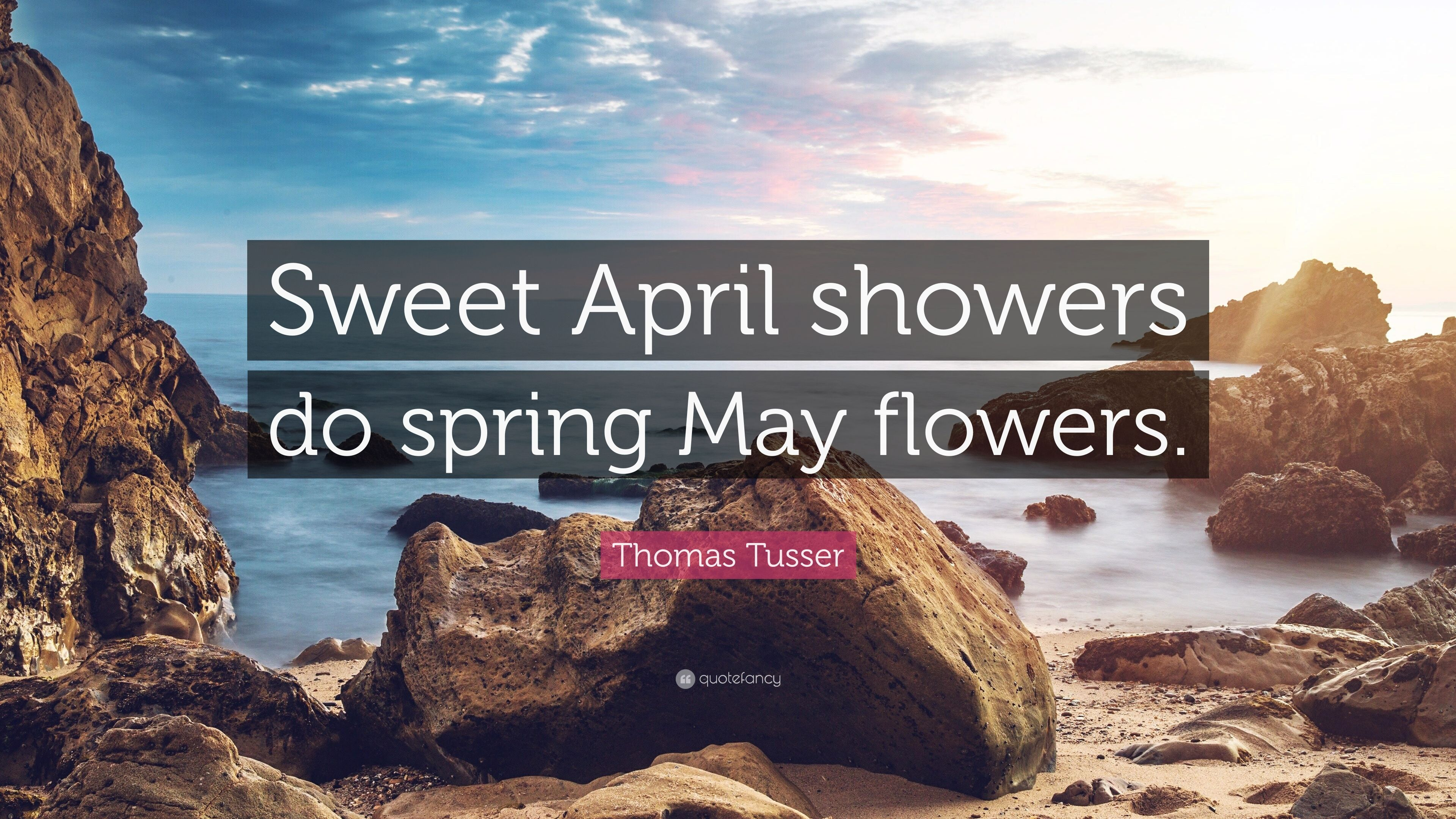 Thomas tusser quote sweet april showers do spring may flowers 7 thomas tusser quote sweet april showers do spring may flowers mightylinksfo
