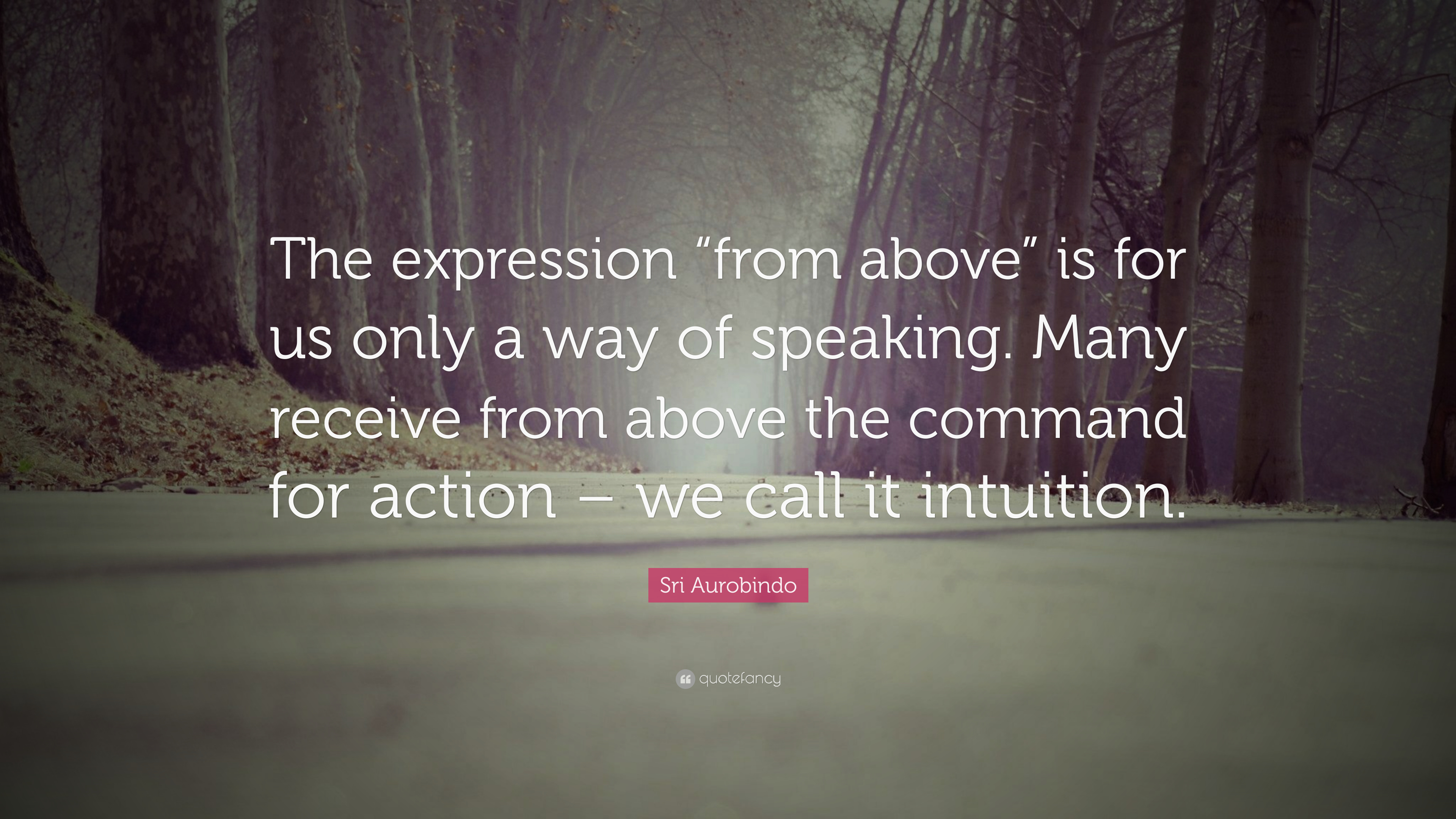 """Sri Aurobindo Quote: """"The expression """"from above"""" is for us only a ..."""