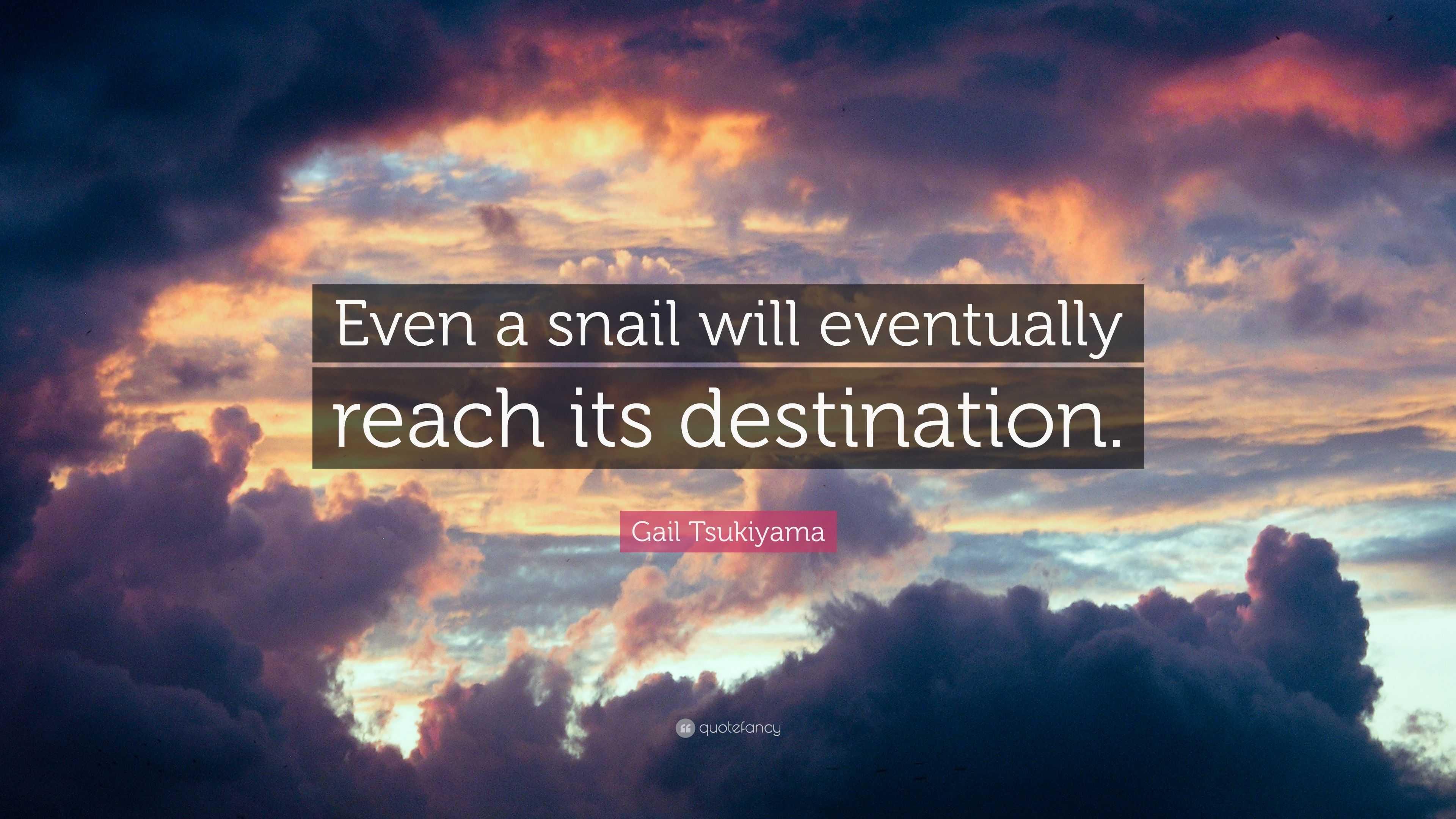 Gail Tsukiyama Quote Even A Snail Will Eventually Reach Its