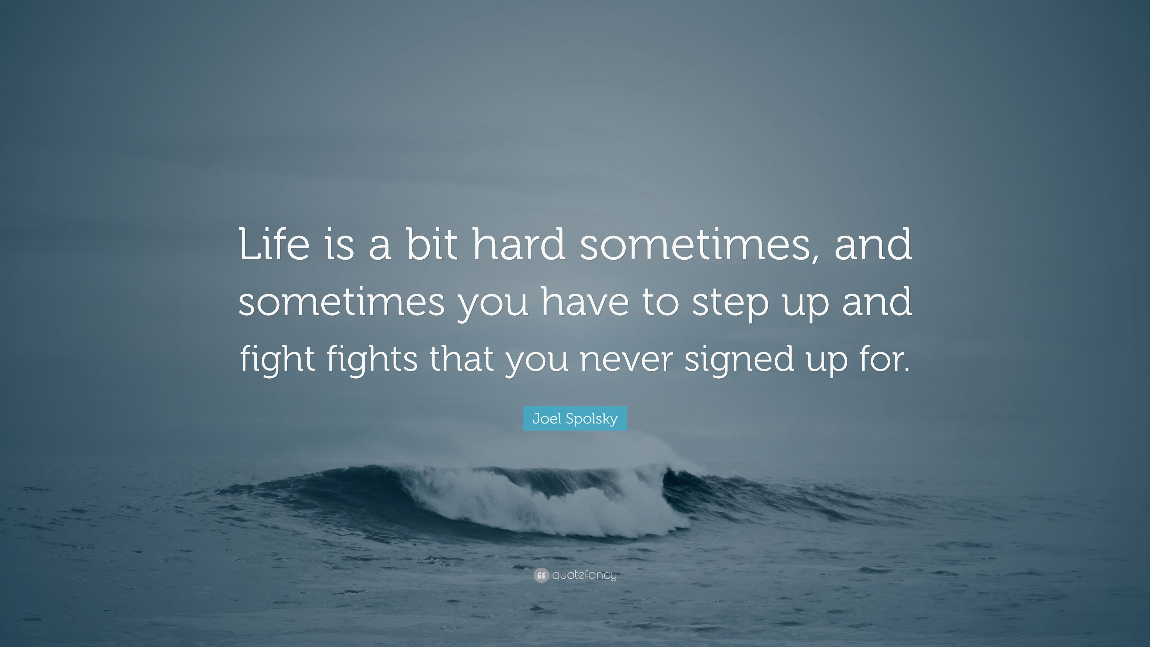 Joel Spolsky Quote Life Is A Bit Hard Sometimes And Sometimes You